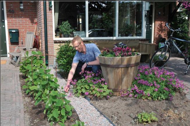 Tropische hoosbuien: maak haast met vergroenen van de tuinen | Opinie