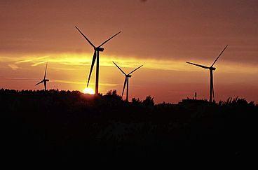 VVD-fracties Rijnstreek verzetten zich tegen regionale besluitvorming over windmolens en zonneparken: 'Gemeenteraden worden in een fuik geduwd, het is slikken of stikken'