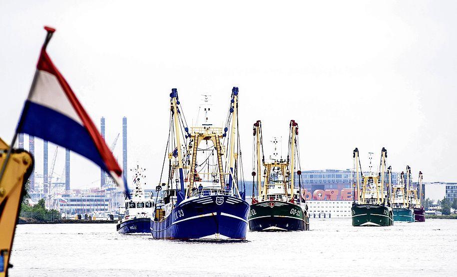 Visserijkoepel VisNed spat uit elkaar na conflict over Noordzeeakkoord met overheid. 'Als de een links wil en de ander rechts, dan gaat het niet meer'