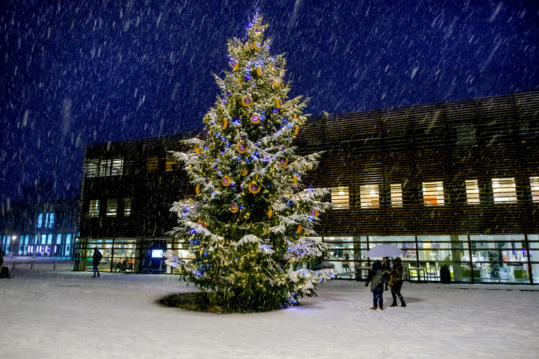 Op het Canadaplein in Alkmaar komt weer 'kaaskerstboom', waaronder ingepakt speelgoed kan worden gelegd