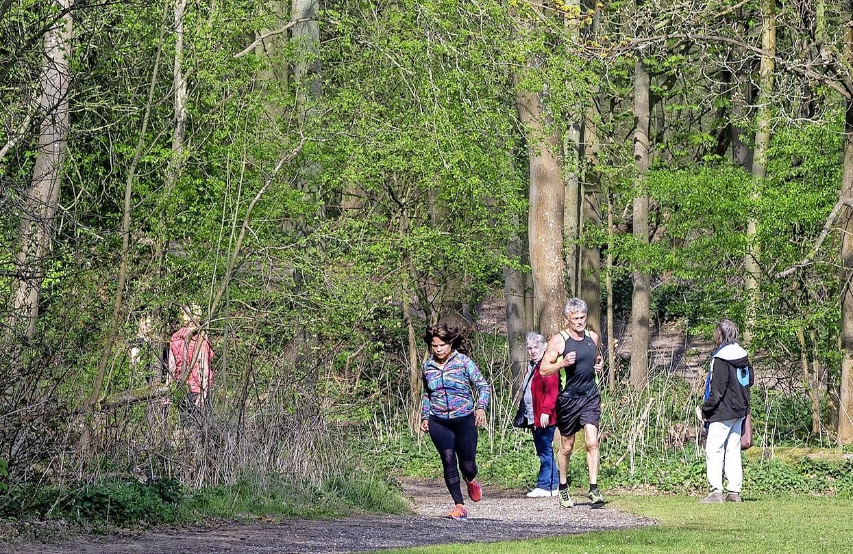 Bloemendaalse burgemeester Roest laat duingebied rond Oosterplas ontruimen