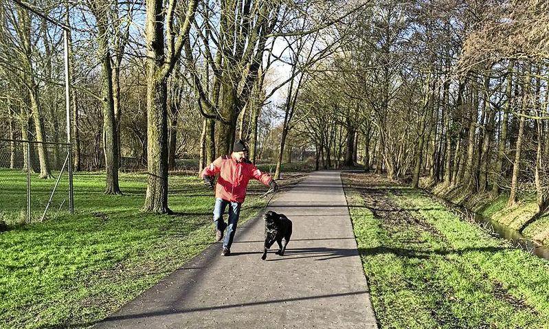 Niemand wil een IKEC dat het wijkpark van Risdam-Noord aantast