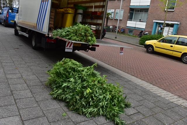 Wietplantage opgerold in Alphen, persoon aangehouden