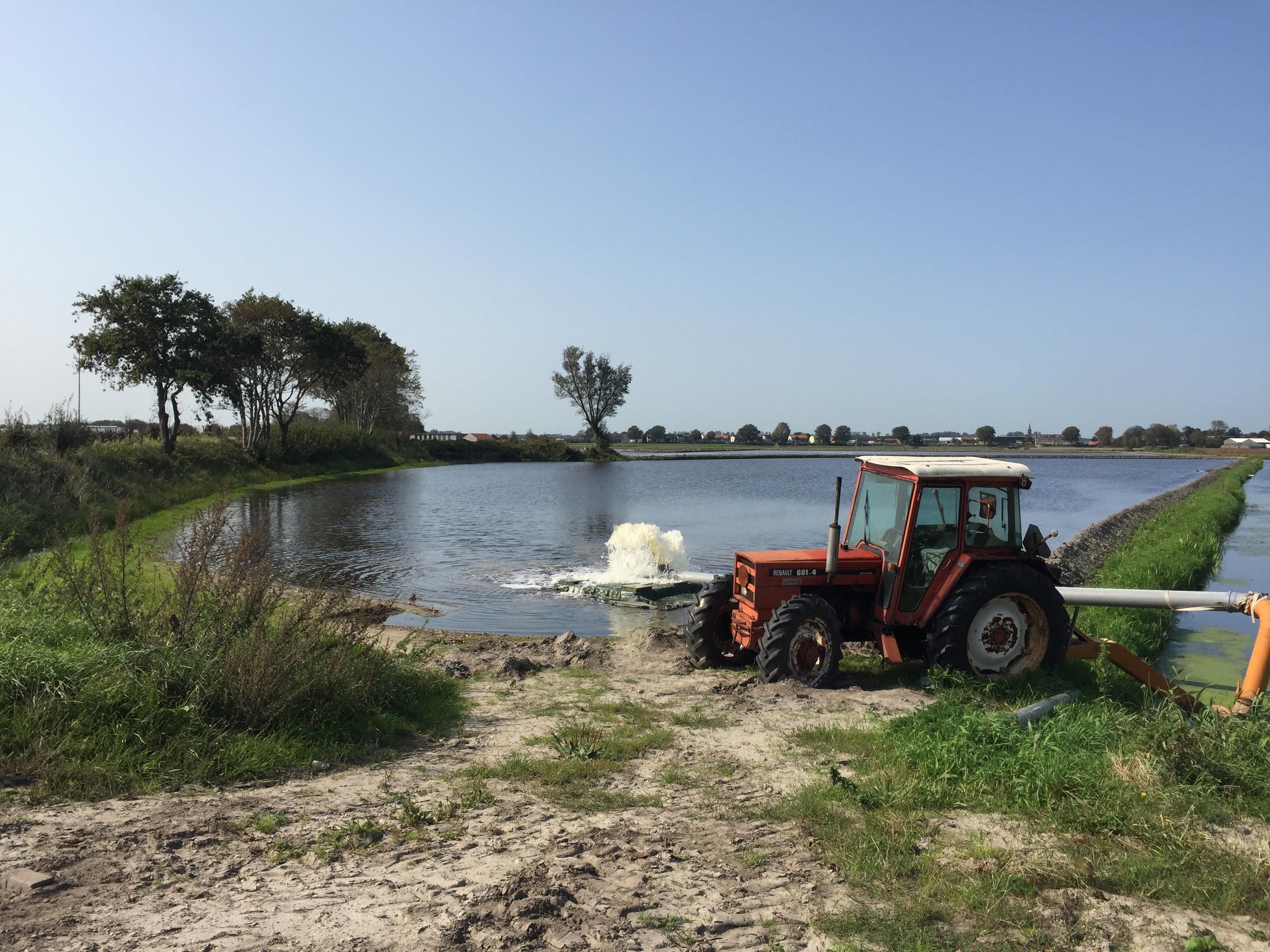 Tijdelijk meer aan Hillegomse Veenenburgerlaan als milieuvriendelijke onkruidbestrijder