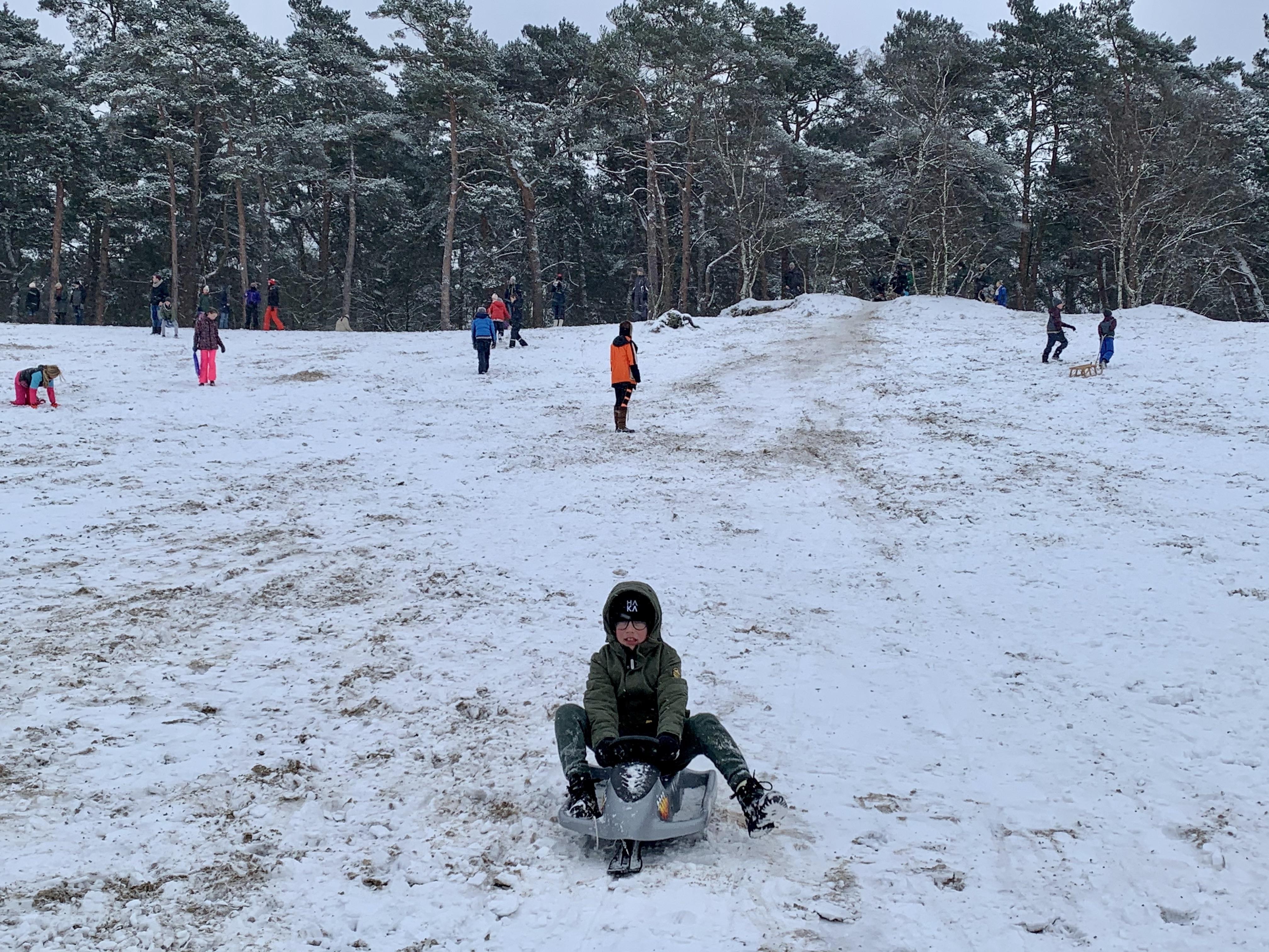 Van peuter tot puber, iedereen op de slee in de Soesterduinen; 'Geen wintersport dit jaar, maar gelukkig wel deze sneeuw'