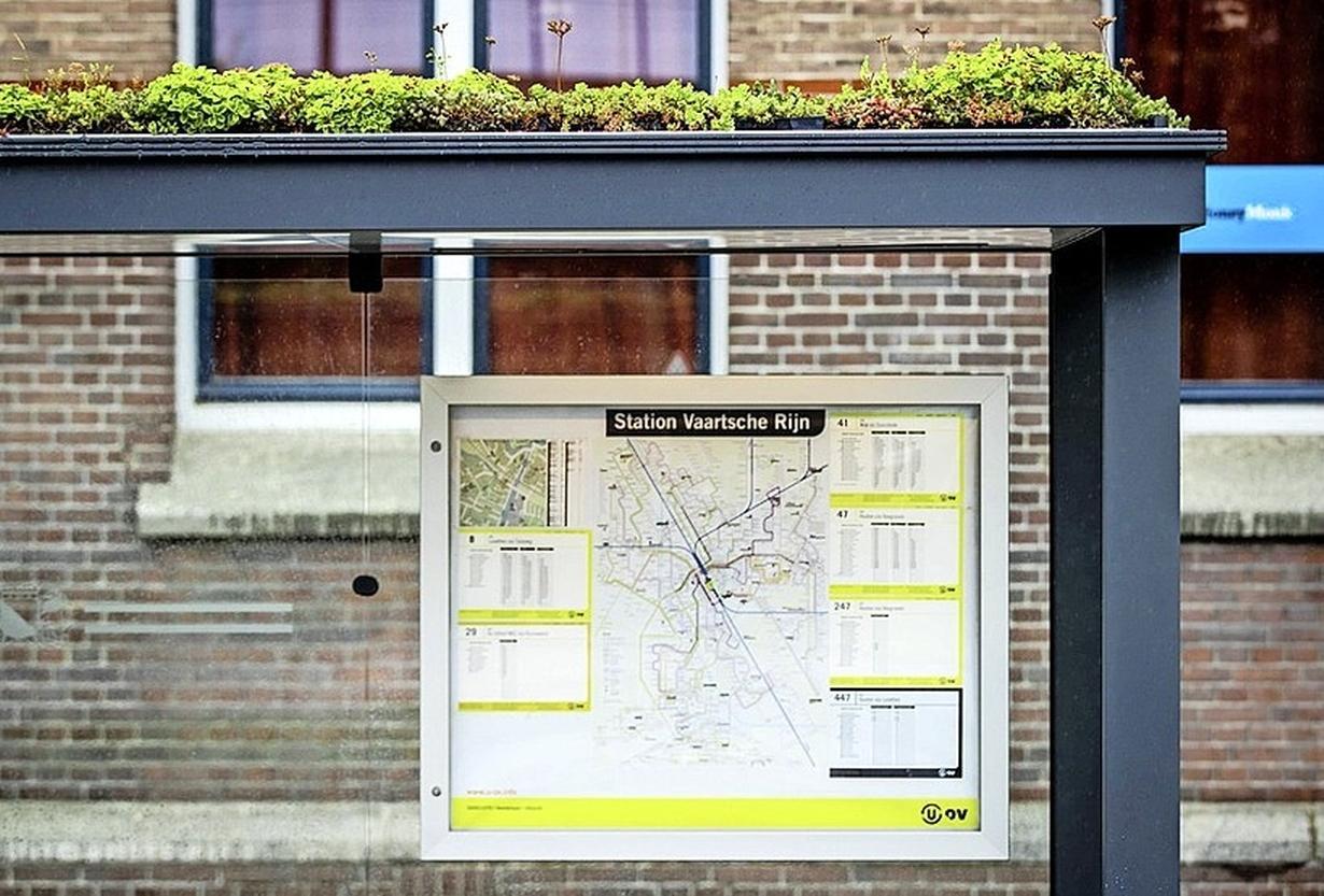 Wel vetplantjes op de daken van bushokjes in Hilversum, maar geen zonnepanelen