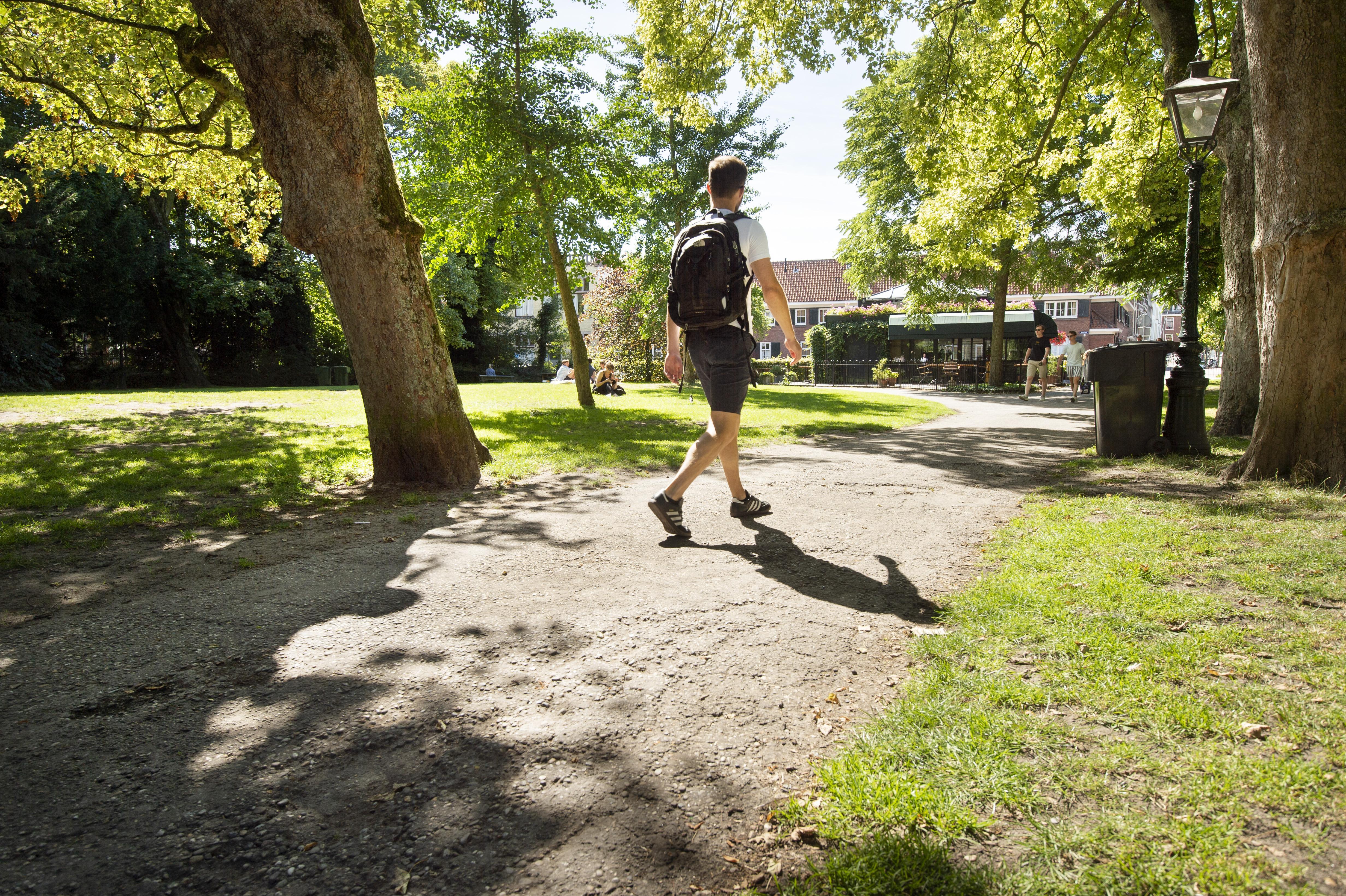 Grootse opknapbeurt van het Leidse Van der Werfpark begint na de zomer