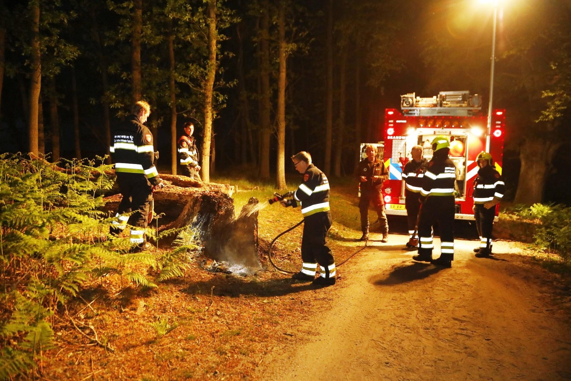 Boomstronk brandt in duingebied bij Vogelenzang, waarschijnlijk aangestoken