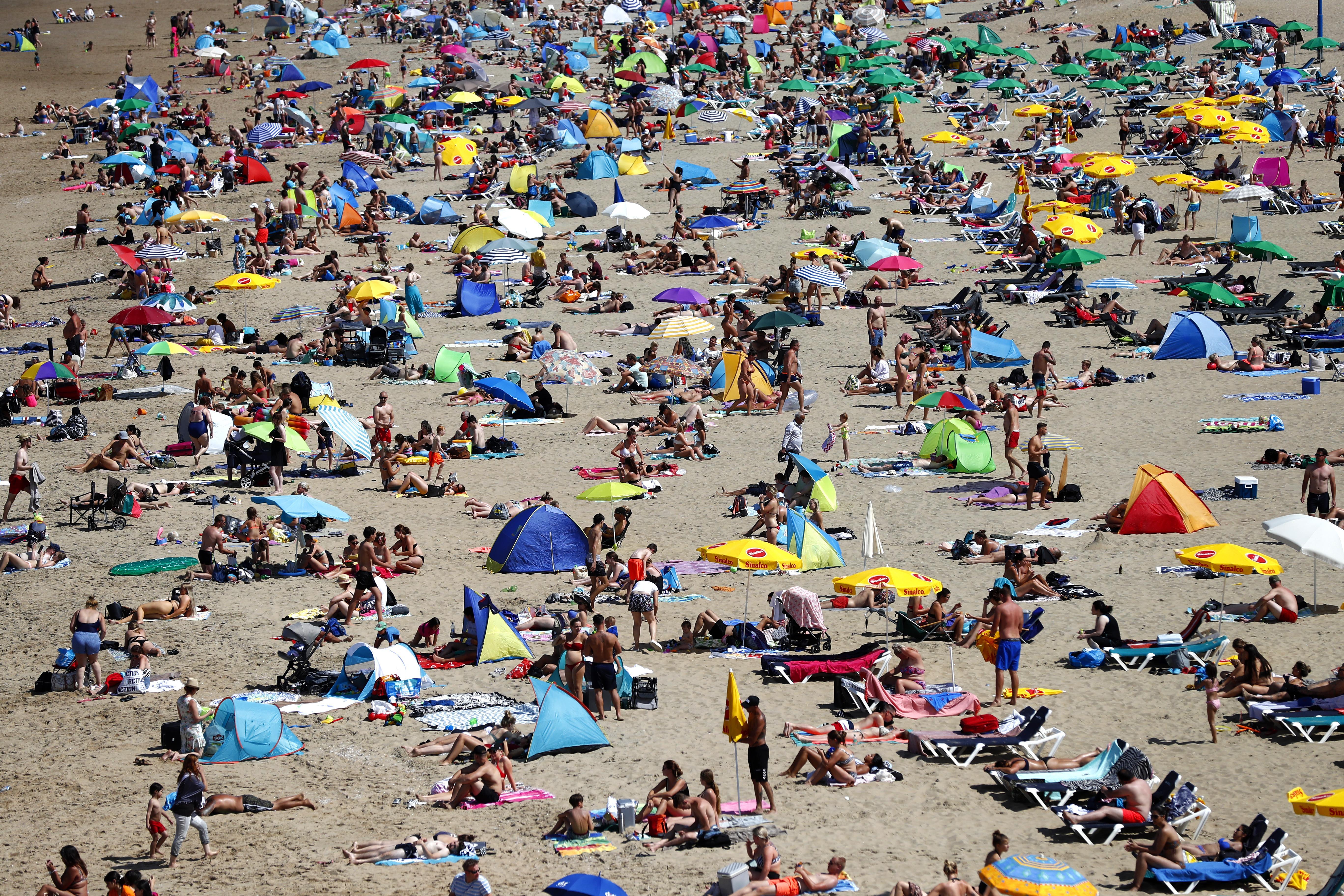 Heel Holland werkt, met zijn kont op het strand | column