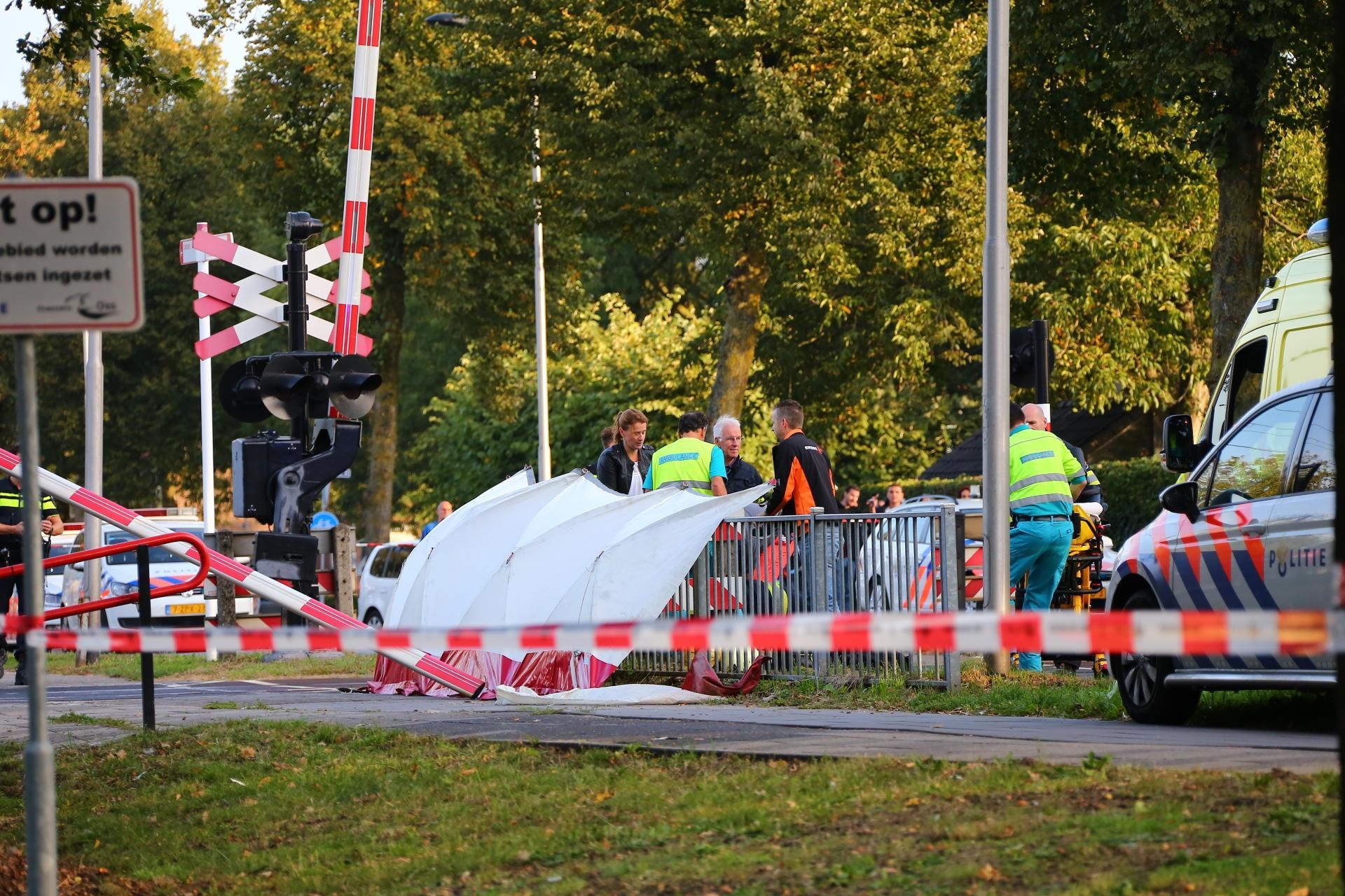 1fe017ec597 Elektrische bakfiets botst op trein: 4 kinderen overleden ...