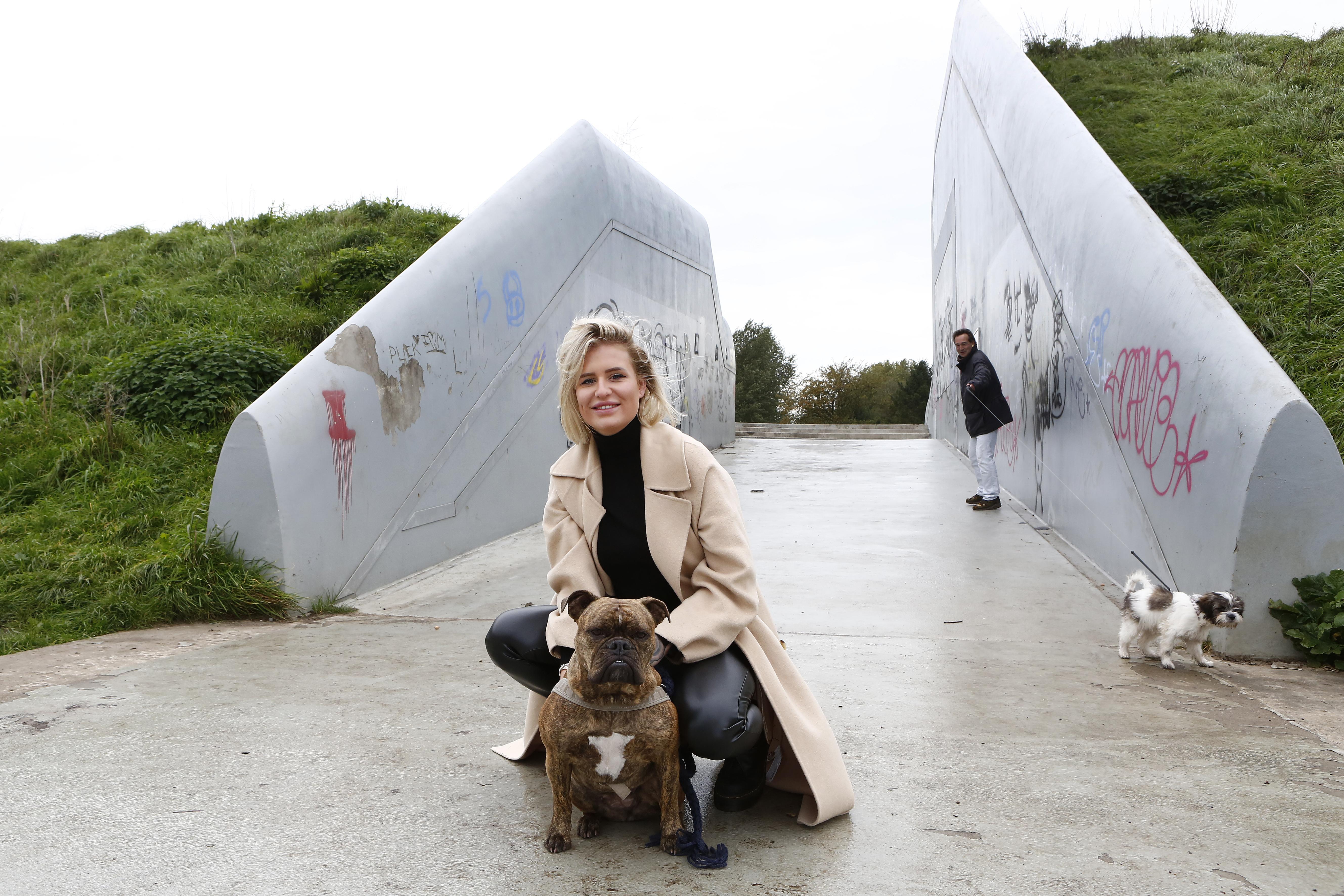 Levensgevaarlijke vestingwal in Weesp: Onfortuinlijke hond Skye zat drie maanden in een wagentje na val op betonnen ondergrond van bastion de Nieuwe Achtkant; 'Wat als een kind over de rand kukelt?'