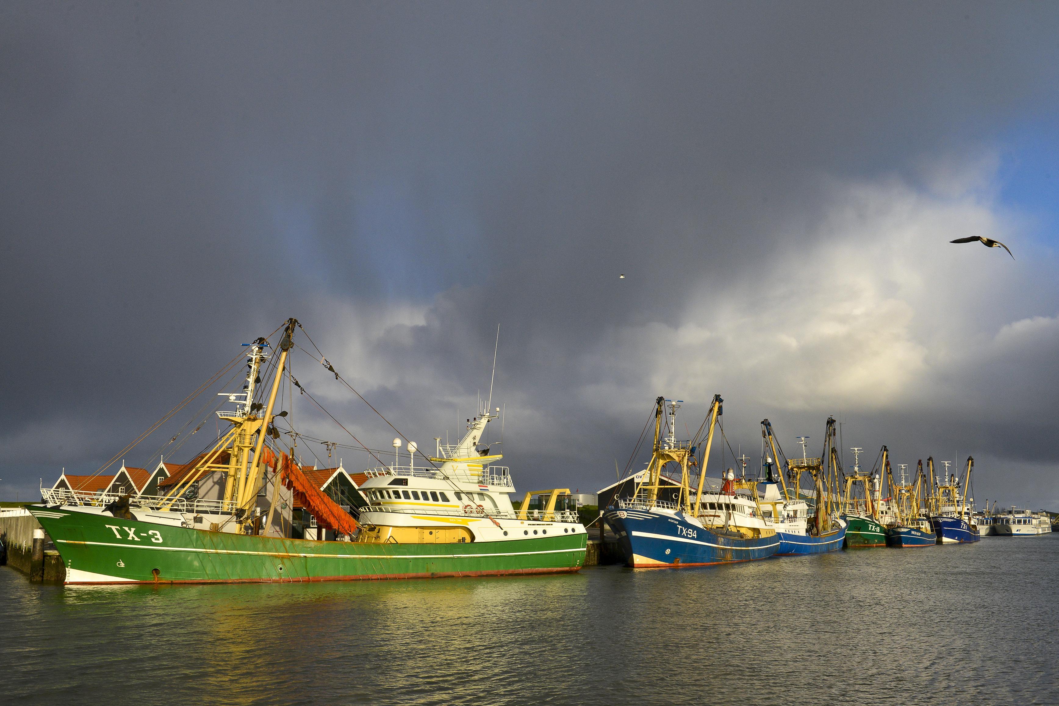 'Hier zijn we altijd bang voor geweest, maar dat het zo erg zou zijn ...' Brexitdeal dramatisch voor visserij Texel en Den Helder