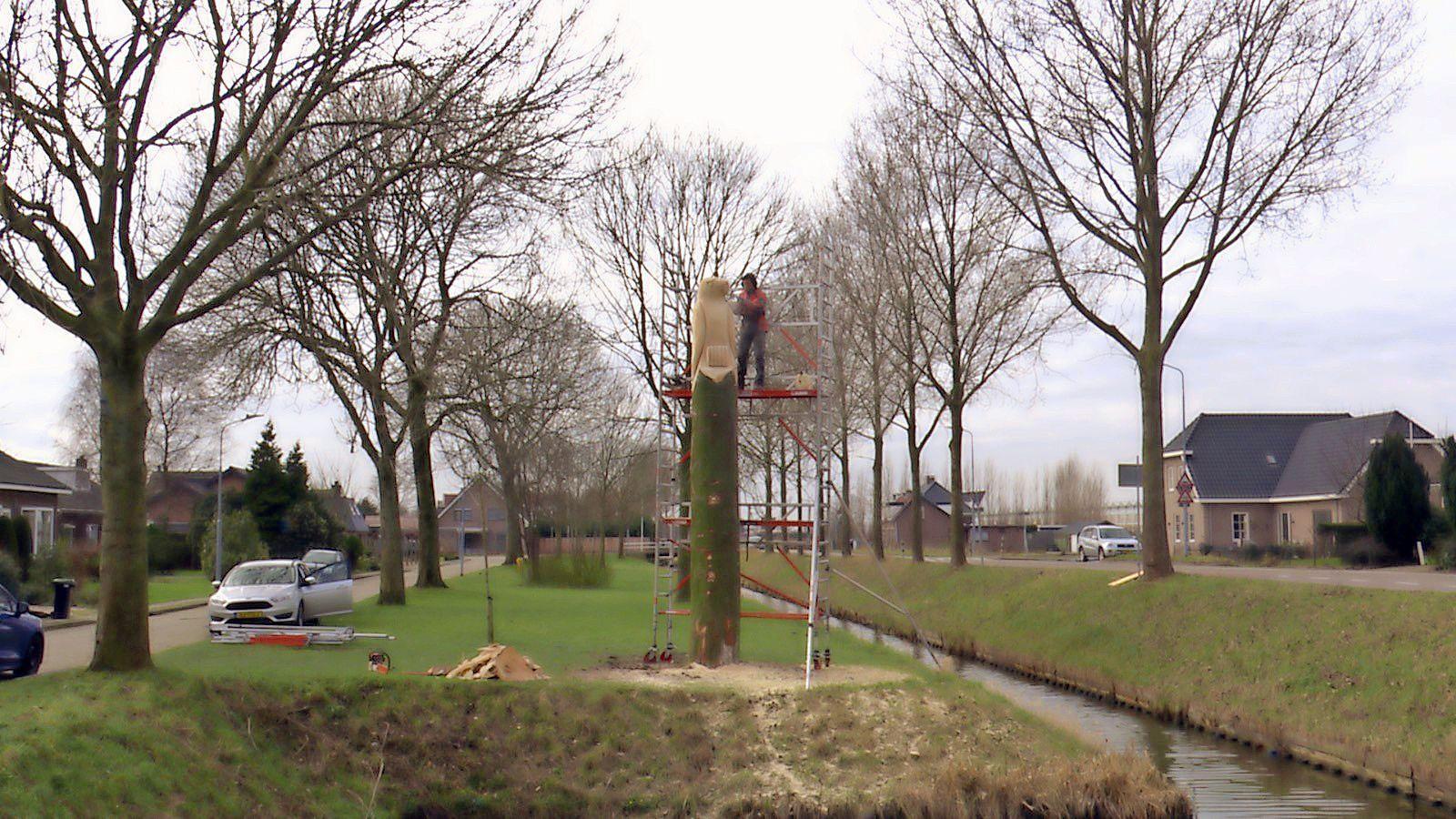 Boomzaagkunst na Hoofddorp ook in Rijsenhout, Nieuw-Vennep volgt