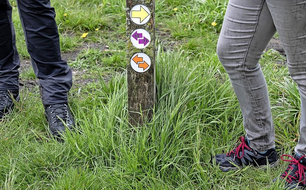 Wandelnetwerk Noord-Holland is een grote coronahit. Gebruik van de app en de site van het netwerk is meer dan verdubbeld
