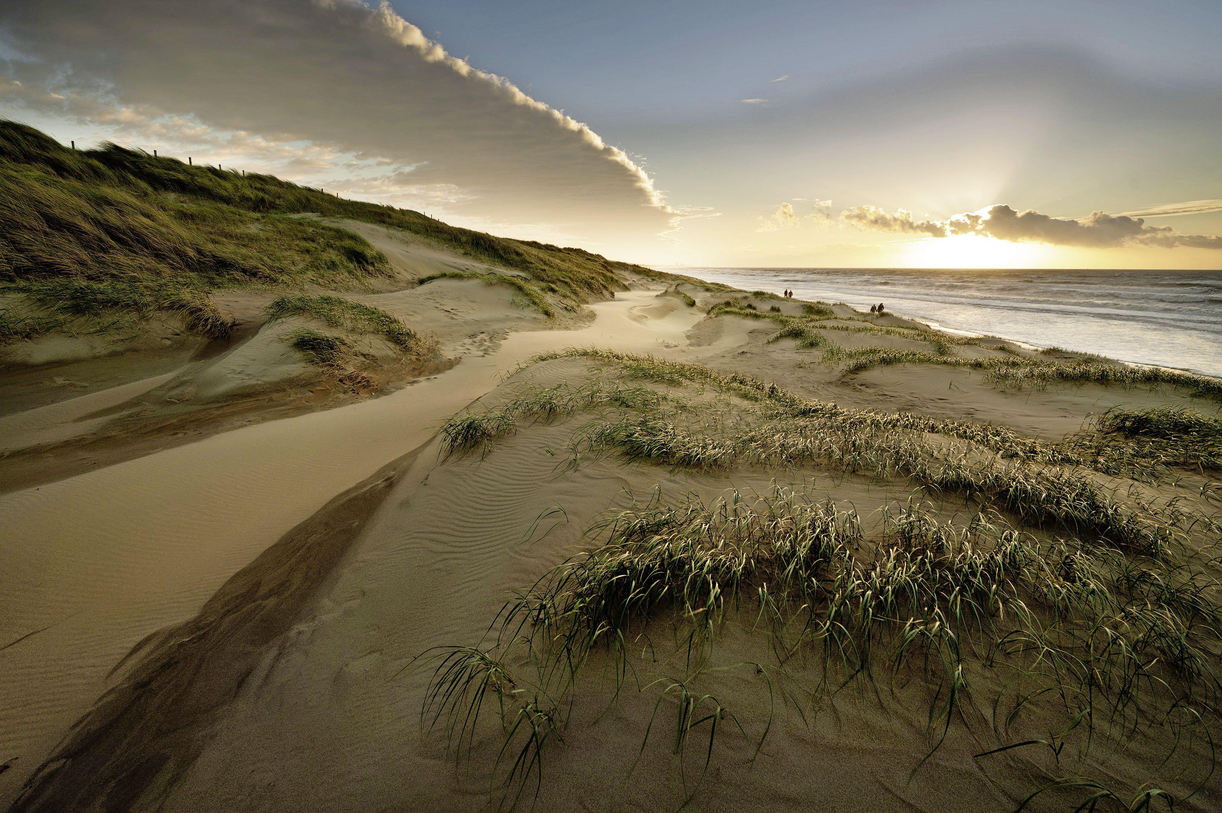 Hollandse Duinen, een natuurgebied in de eigen achtertuin; nieuwe initiatieven dankzij status Nationaal Park