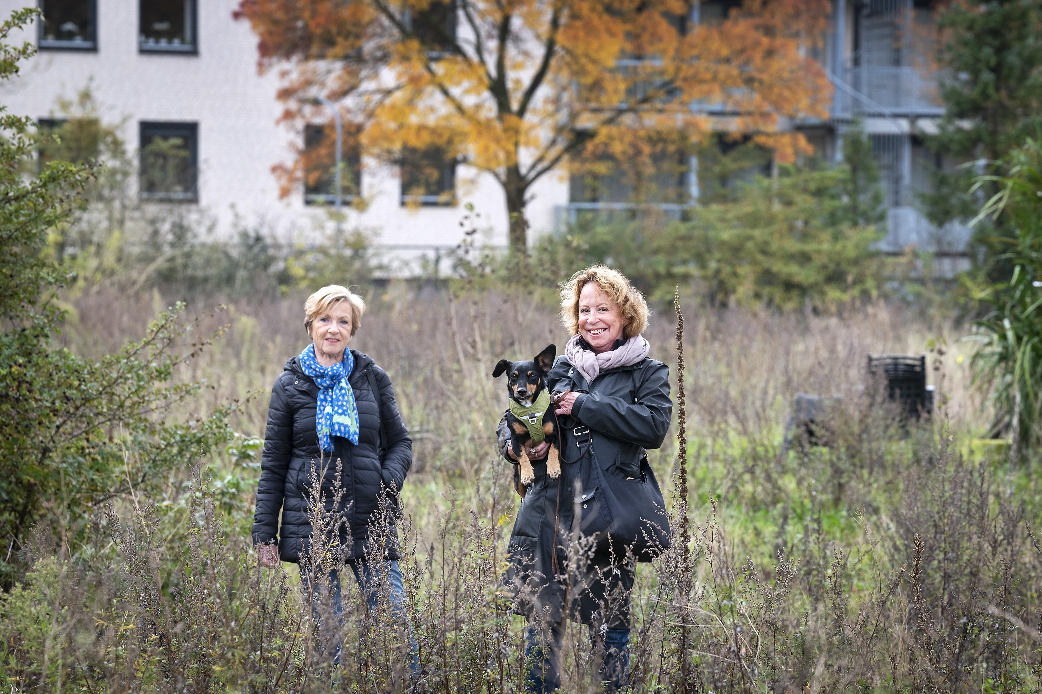 Knarrenhof wil een woongroep voor ouderen in Haarlem starten, maar een locatie vinden blijkt al ruim drie jaar een onmogelijke taak: 'De grond is hier te spaarzaam'