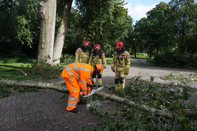 Storm in Zaanstad: kettingzagen op volle toeren en wateroverlast (video)