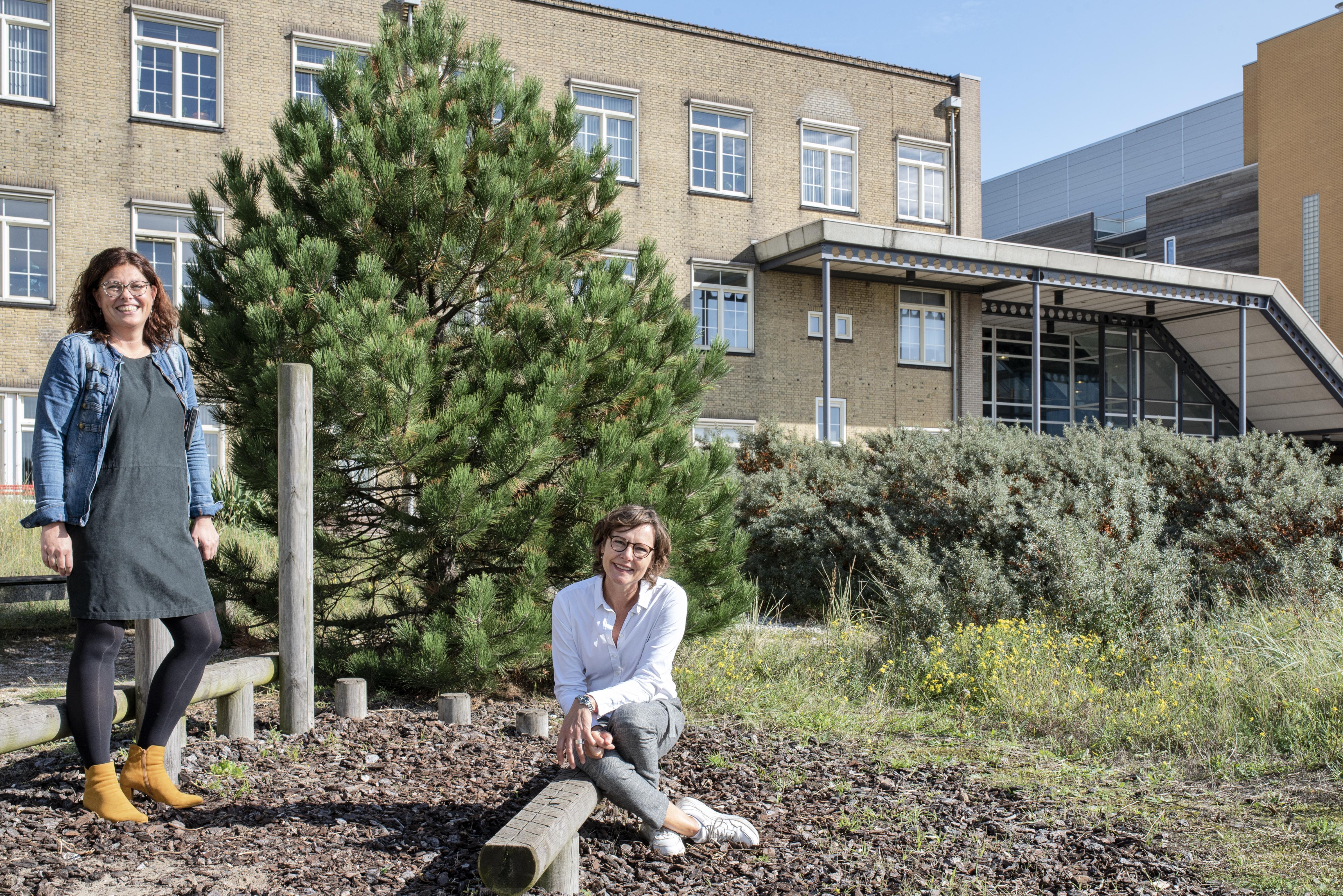 Marieke van Beugen van Heliomare geeft je inzicht in het pijnbrein: 'Wij helpen 300 tot 400 patiënten per jaar. Die kunnen weer meedoen'