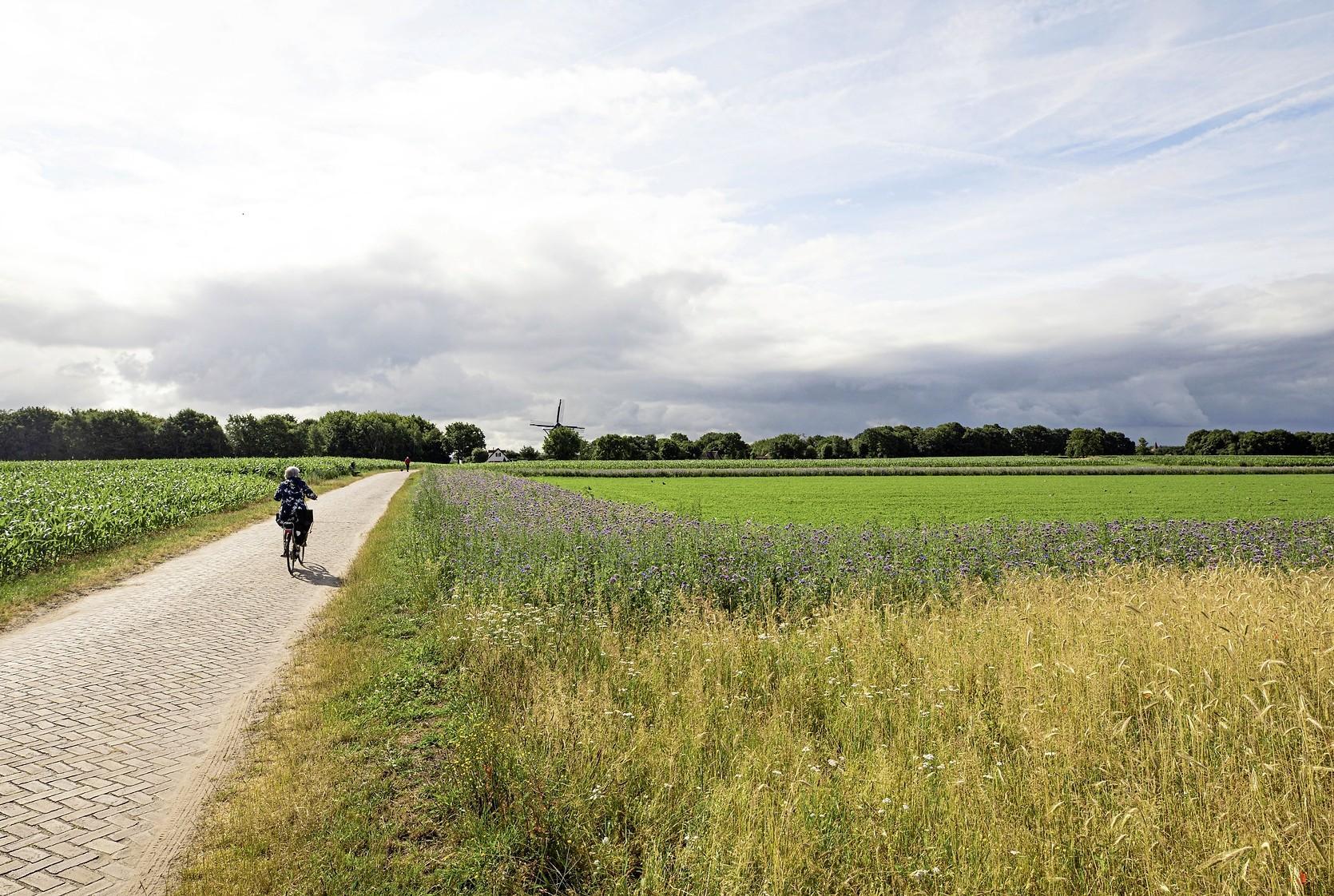 Jubilerende Historische Vereniging op zoek naar de mooiste foto van Soest en Soesterberg; Inzenden kan de hele zomer