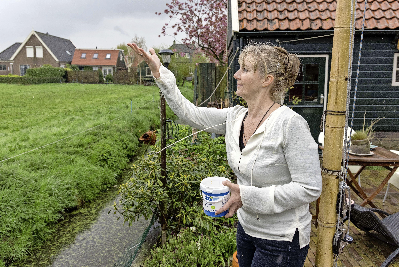Diana voerde gespotte kraanvogel vier maanden lang aan huis. 'Ik heb hem door de strenge winter gesleept'
