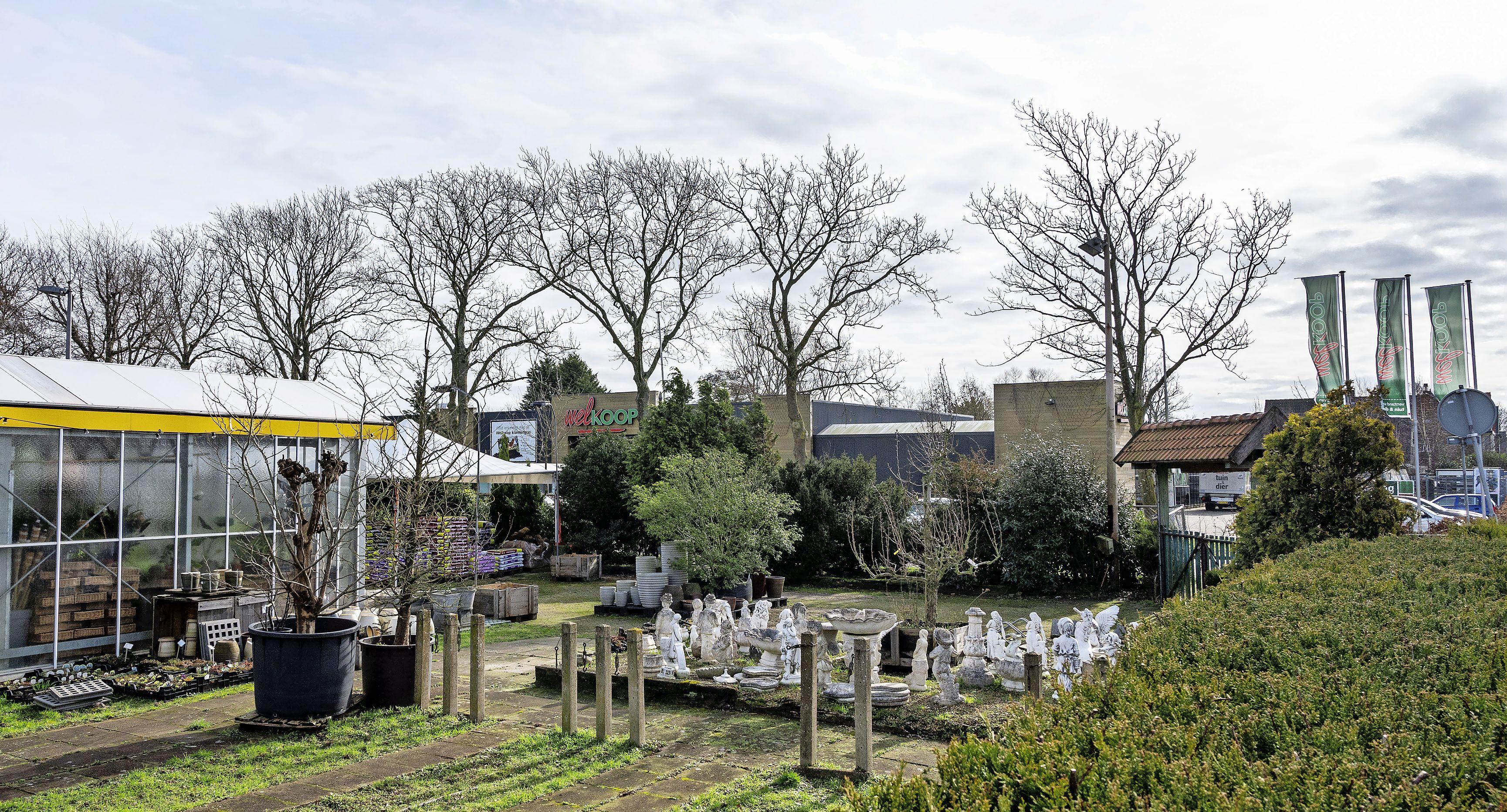 Rampzalig coronabeleid op de vierkante meter: Tuincentrum Henk Haan mag niets, buurman Welkoop in Santpoort-Noord alles