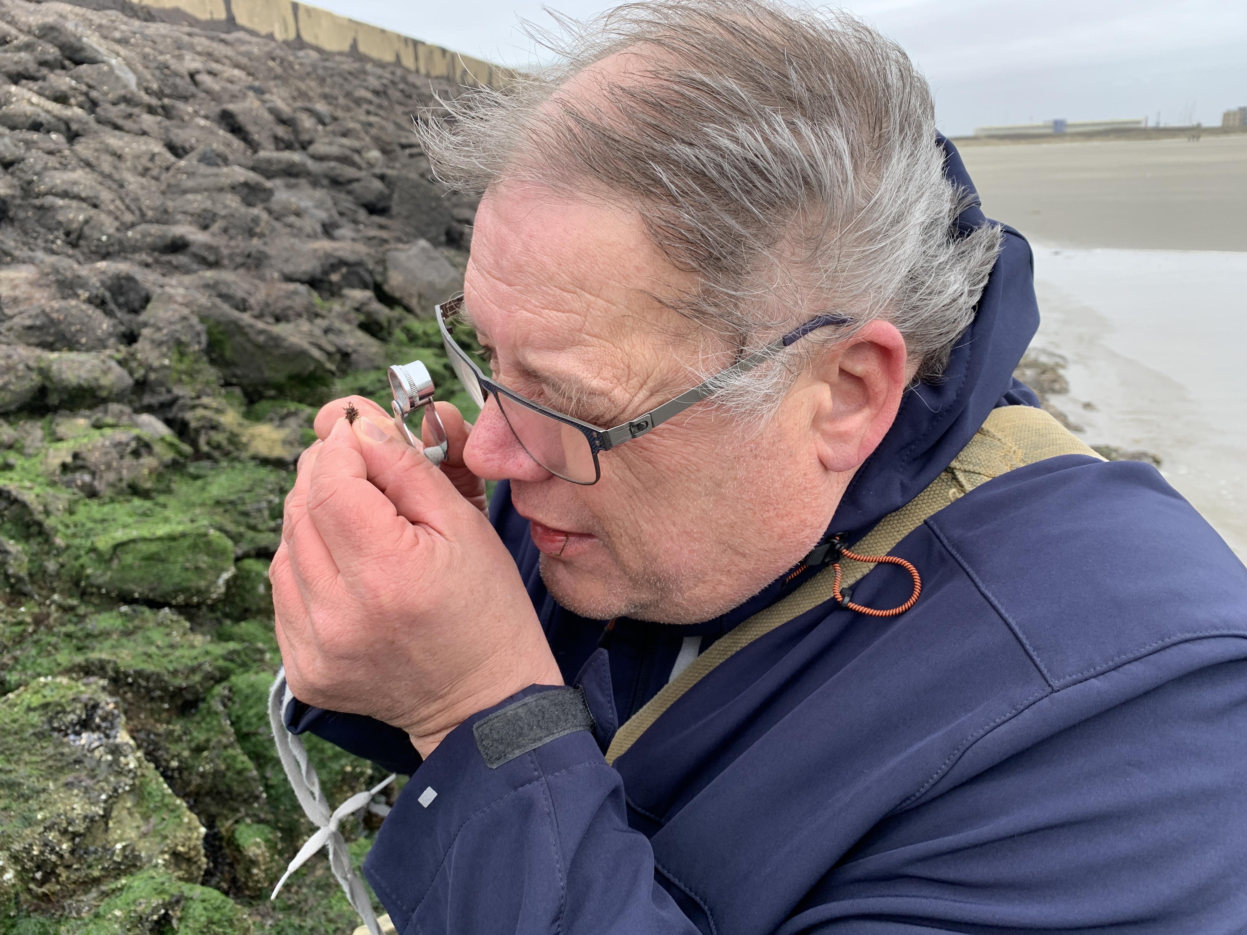 Windkracht 7 trotseren voor een duik in de wonderlijke wereld van de zeewieren
