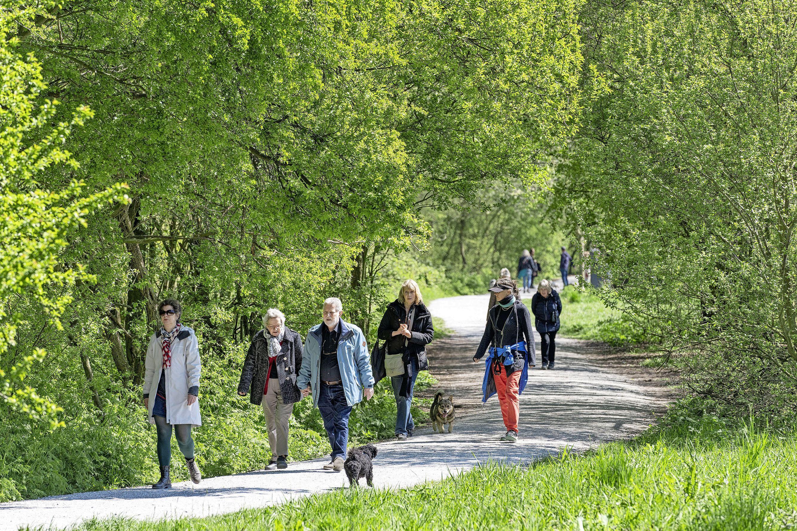 Honden niet aan de lijn in Leids polderpark, ook al verjagen ze vogels