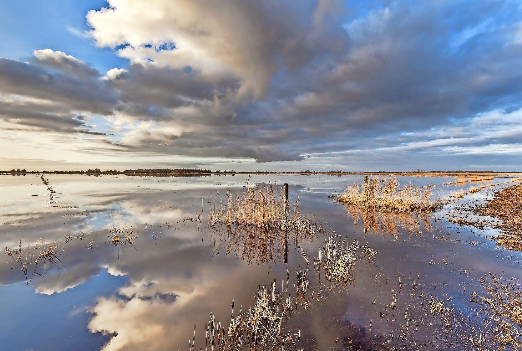 Meepraten over de toekomstige inrichting van de IJsselmeerkust. Het ecologische project Wieringerhoek bijvoorbeeld: het verbeteren van de soortenrijkdom in het IJsselmeer