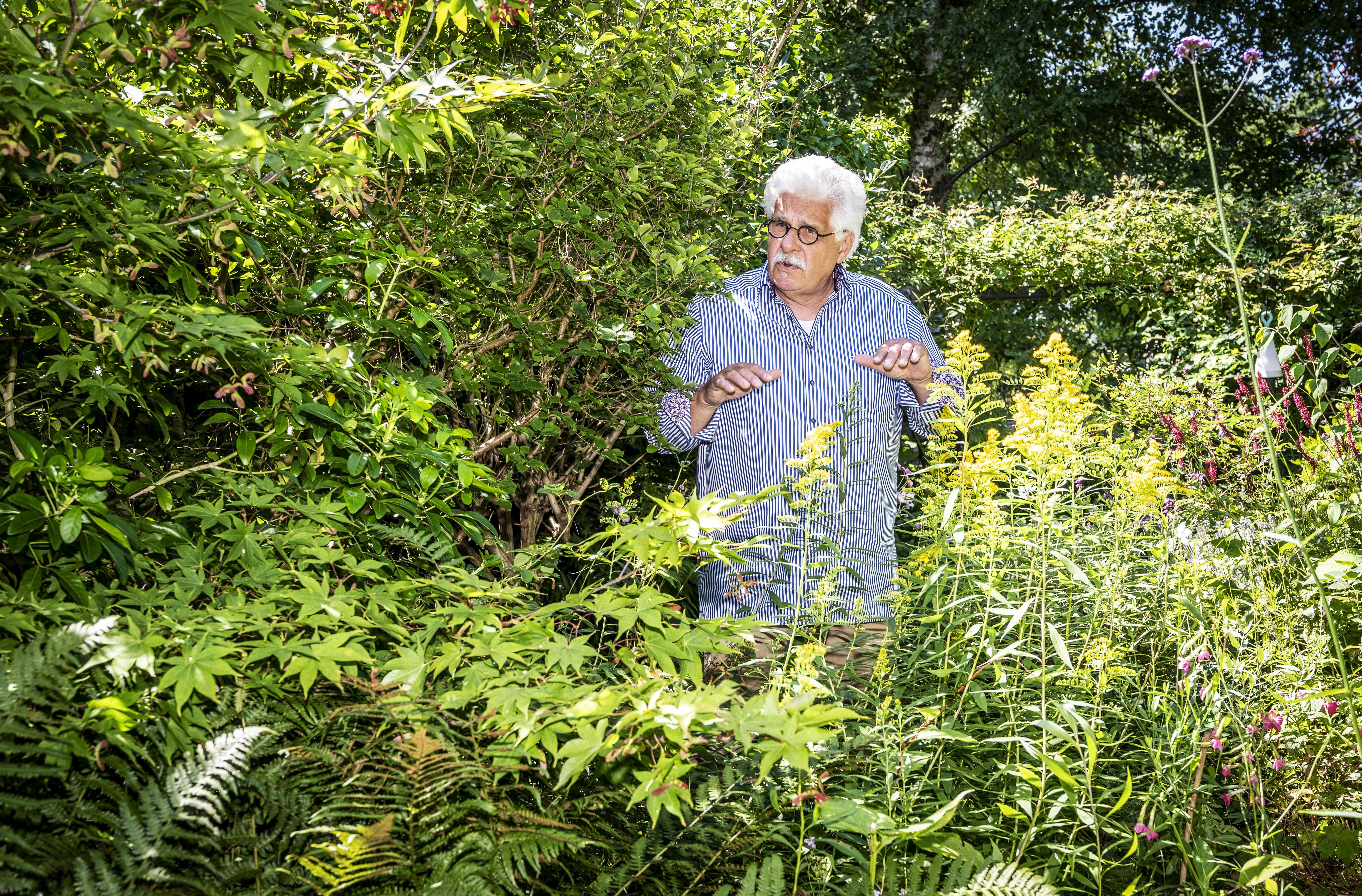 De strijd tegen de stenen van Haarlemmer Peter Bulsing: 'Wij denken ten onrechte boven de natuur te staan'