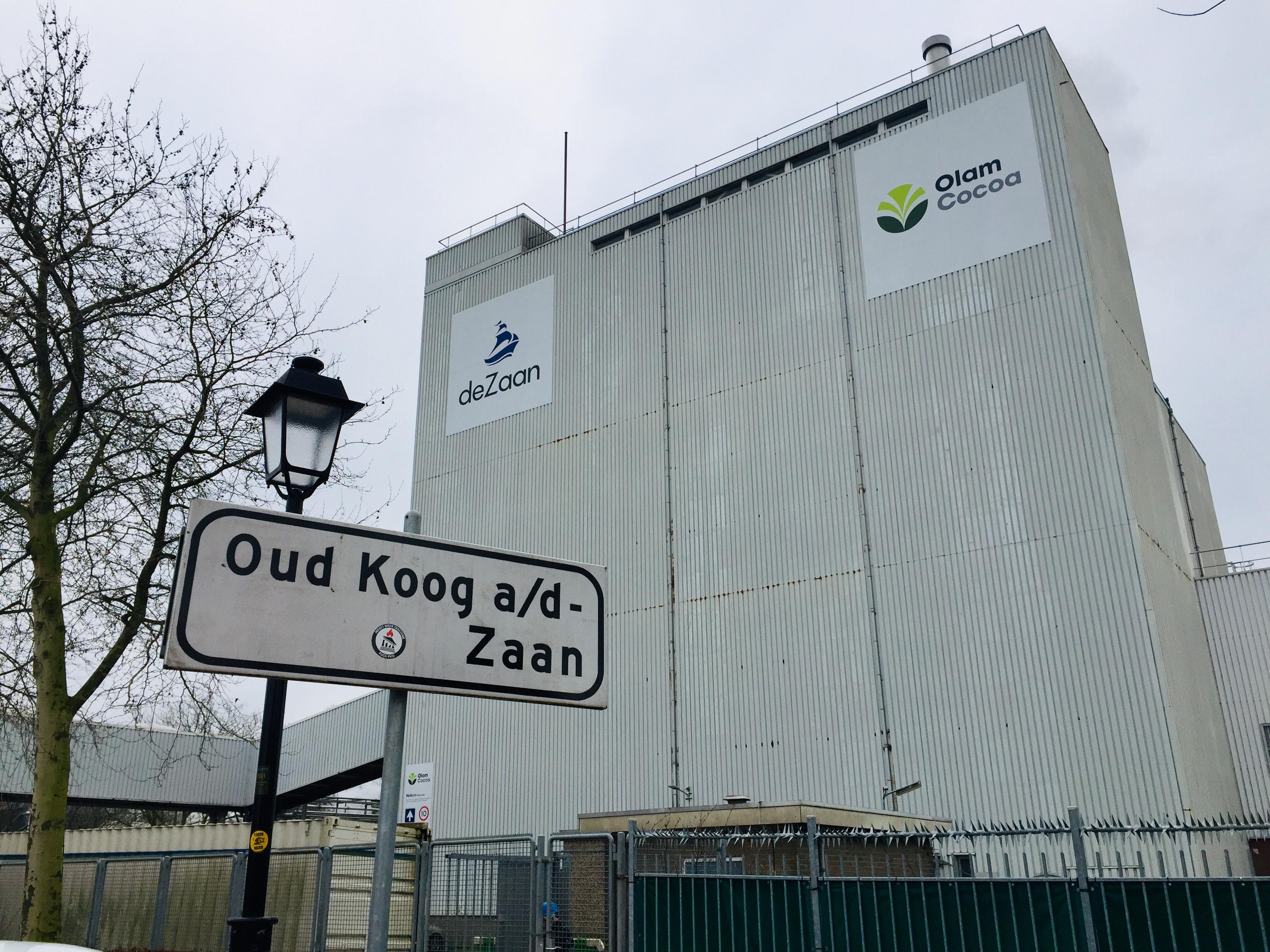 Opinie over cacaofabriek Olam in Koog aan de Zaan: Het raadsel van de stinkende ui