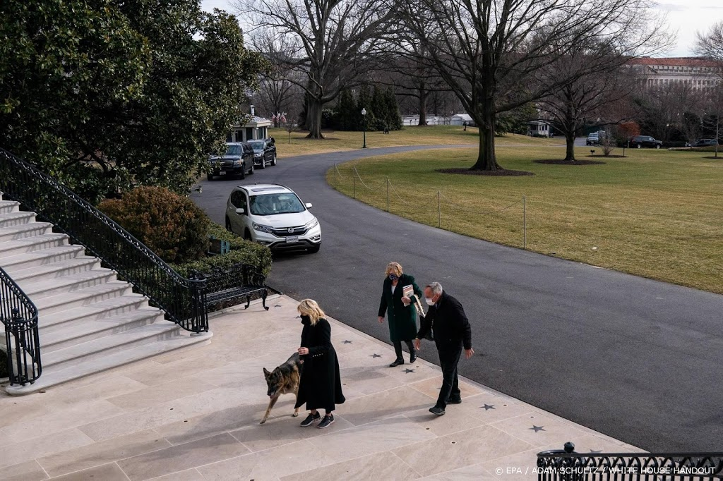 'Duitse herders Joe Biden weg uit Witte Huis na agressief gedrag'