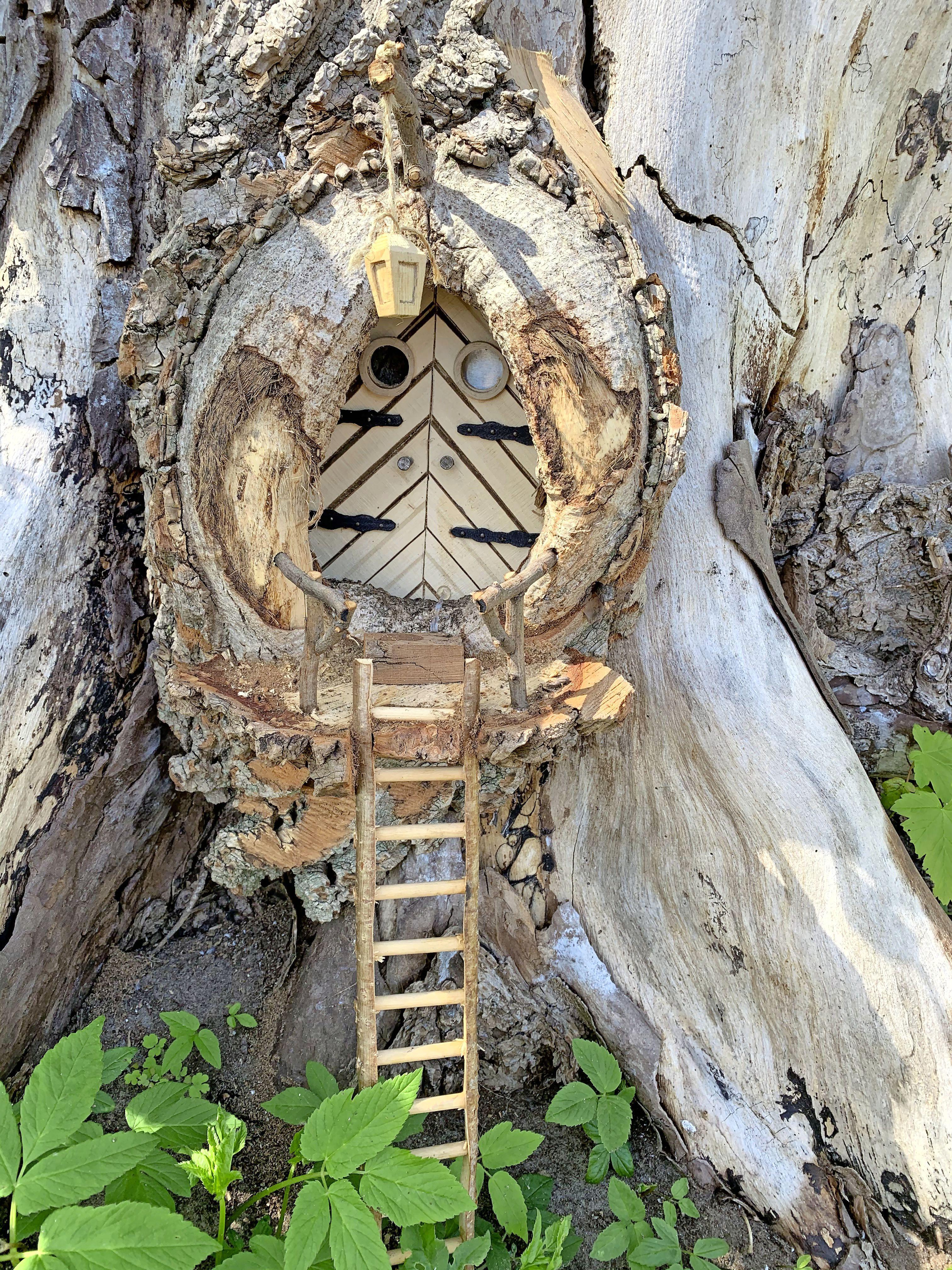 Louter de Kabouter bouwt het bos vol met kleine huisjes, PWN zit ermee in zijn maag: 'Het moet geen Efteling worden'