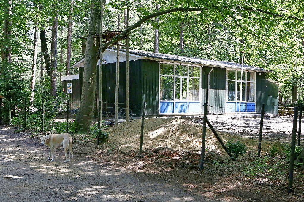 Scouting Merhula vreest overlast voor bewoners nieuwe wijk naast paleis; Stemming over niet ideaal huurcontract met Soestdijk; 'Nieuw duurzaam clubhuis wordt ook te duur'