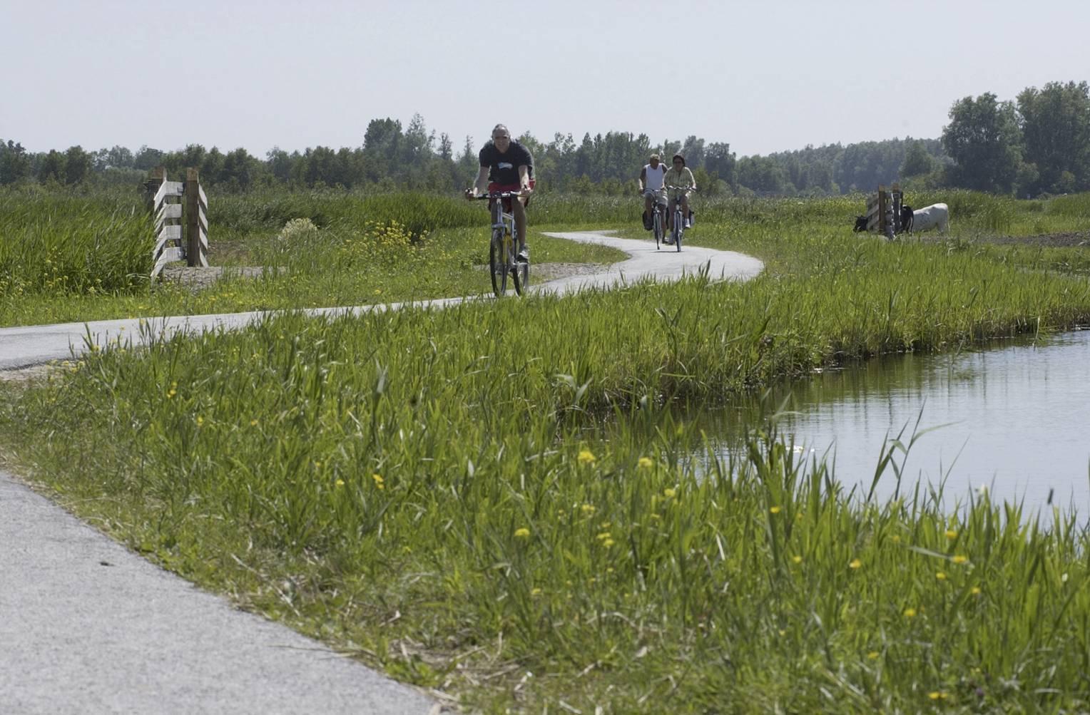 Landsmeer sluit fietspad Luijendijkje naar Twiske af in verband met coronagevaar