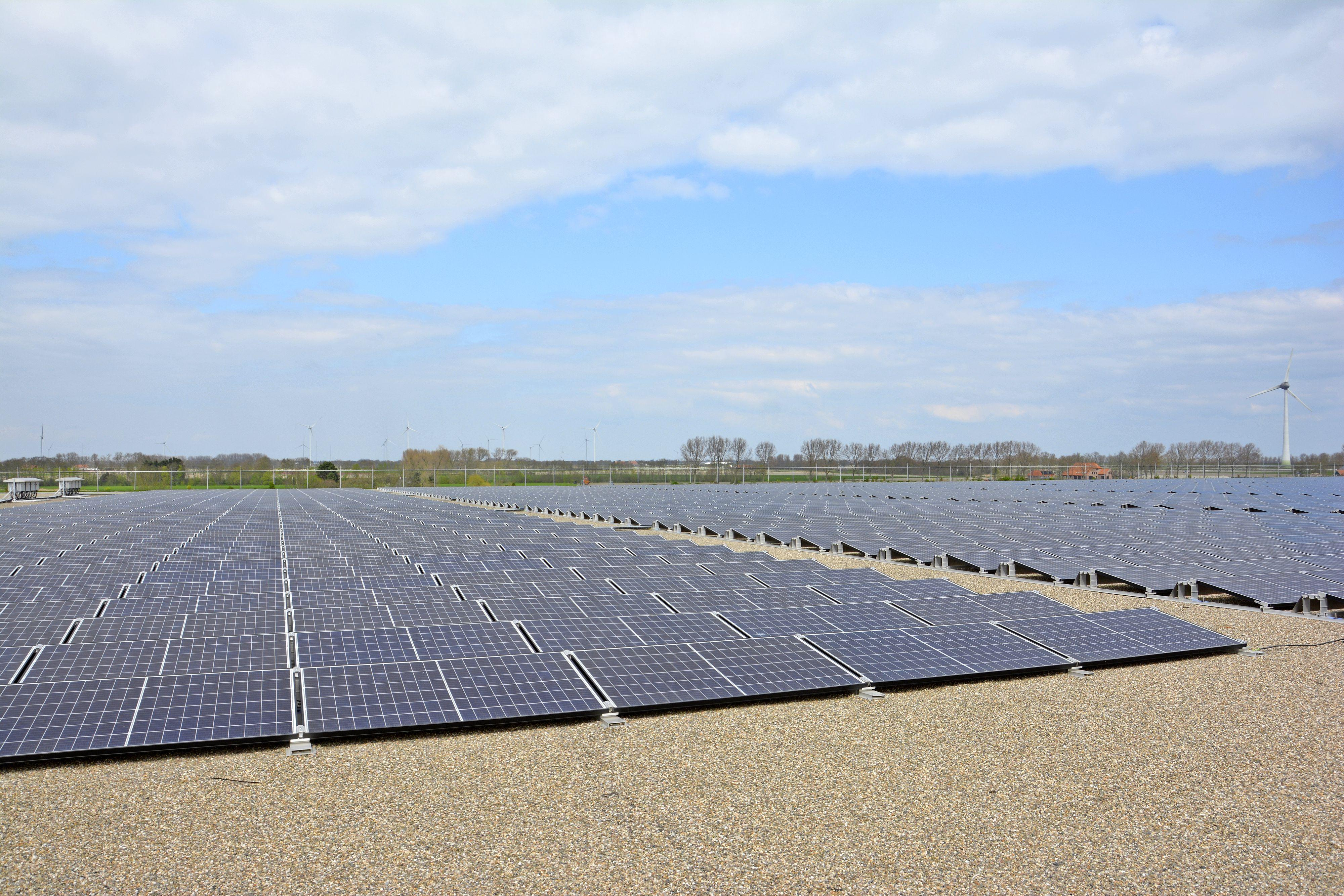 Zonnepark in Haarlemmermeer voor de helft eigendom van omwonenden