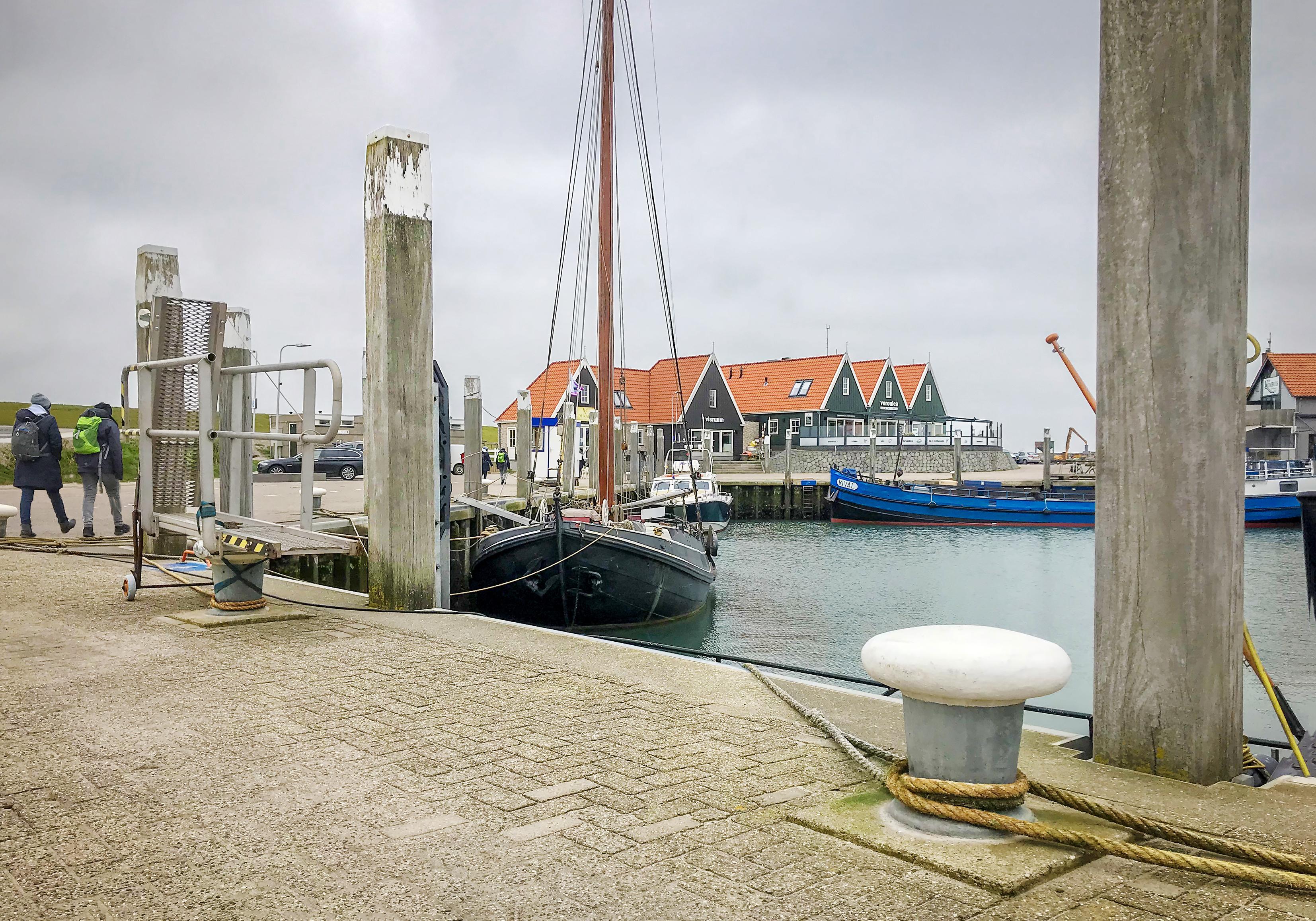 Politie is klaar met klachten: zwemmen in haven Oudeschild is verboden. Een duik nemen kan je 140 euro kosten