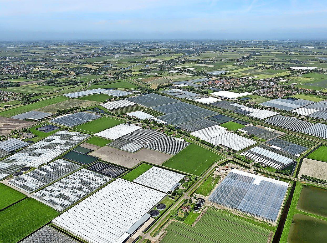 Grote windturbines in Altongebied Heerhugowaard 'onwaarschijnlijk'. Politiek is vooral enthousiast over zonnepanelen op daken van bedrijven. 'Dat gaan we als eerste oppakken'