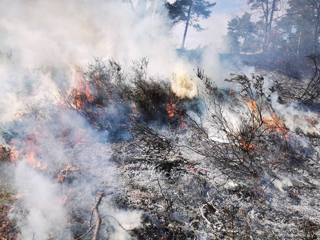 Ongeveer 2700 personen in veiligheid bij bosbrand Zuid-Frankrijk