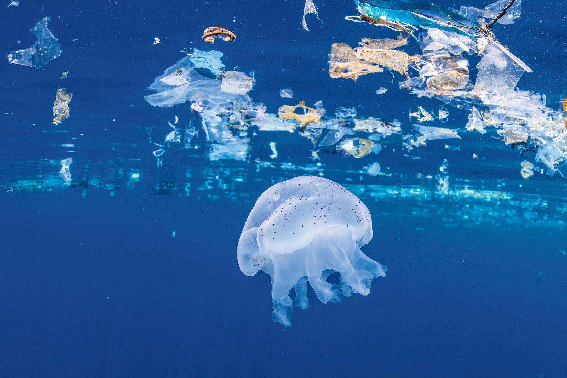 Bellenscherm tegen plastic in Katwijkse uitwatering stap dichterbij