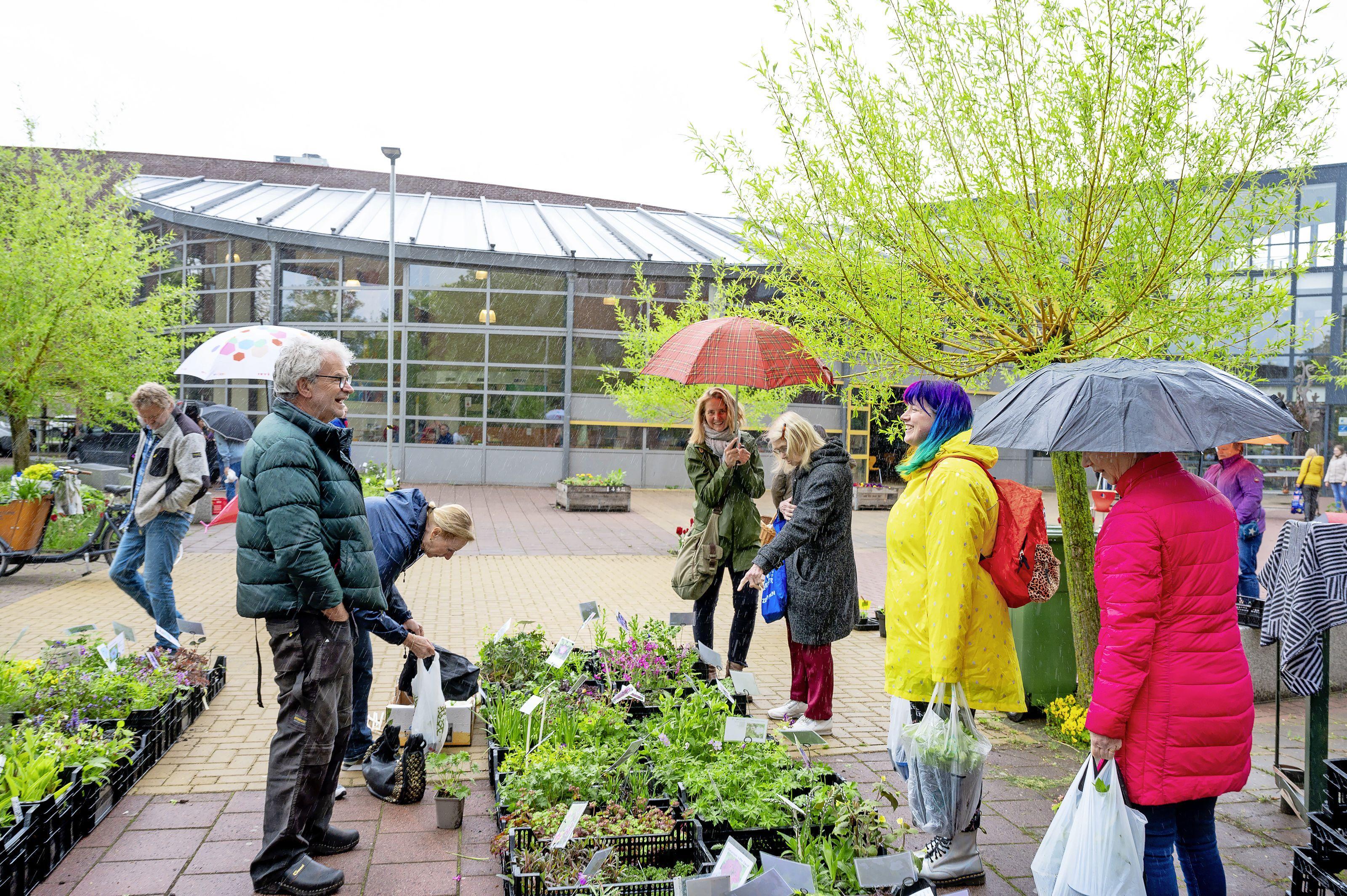 Plantenmarkt Clusius na een jaar weer terug: 'Veel leuker dan een tuincentrum, een beetje ouderwets'