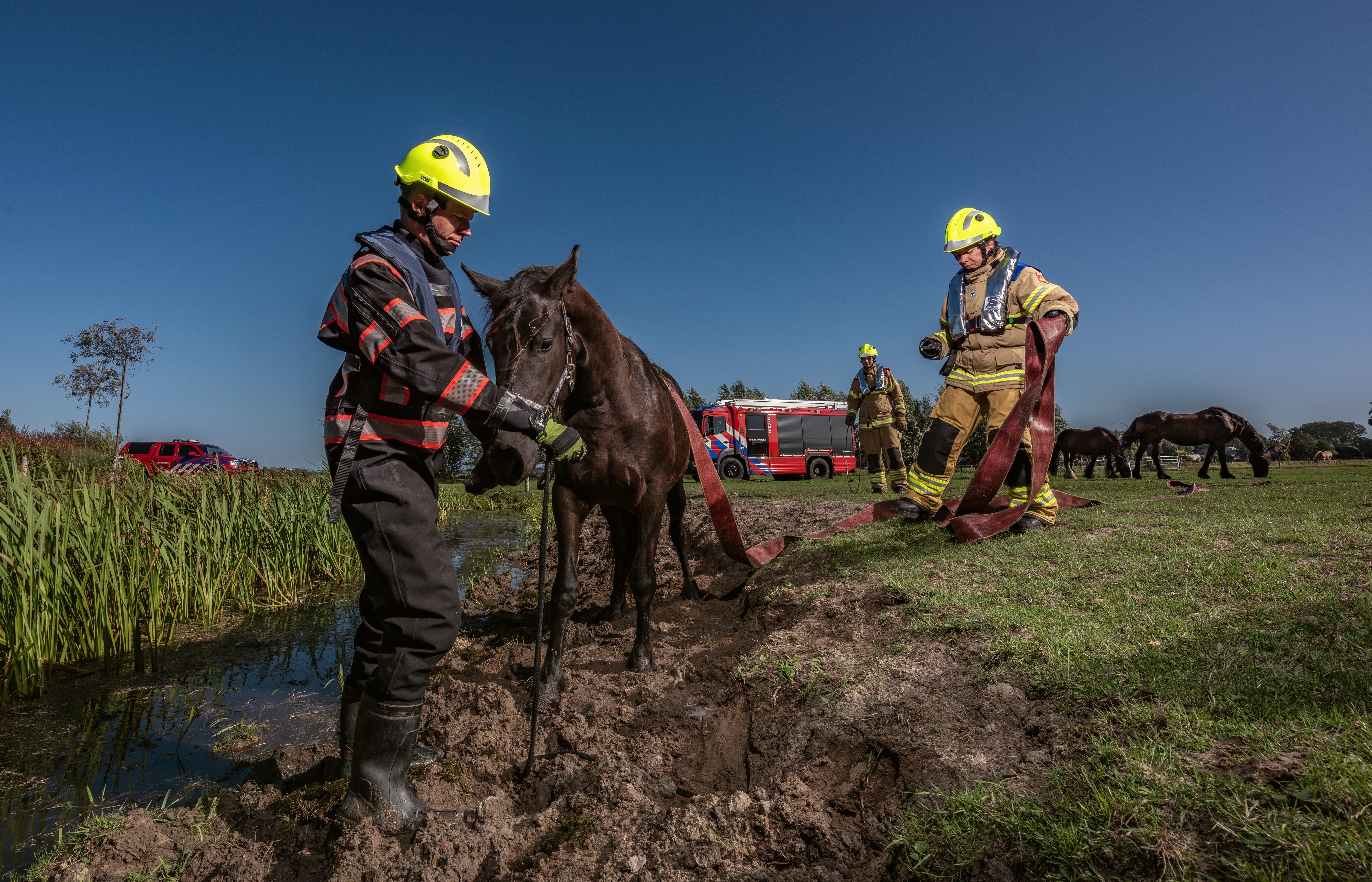 Hoe houden we de brandweerposten open? Korpsen in Noord-Holland werven brandweervrijwilligers