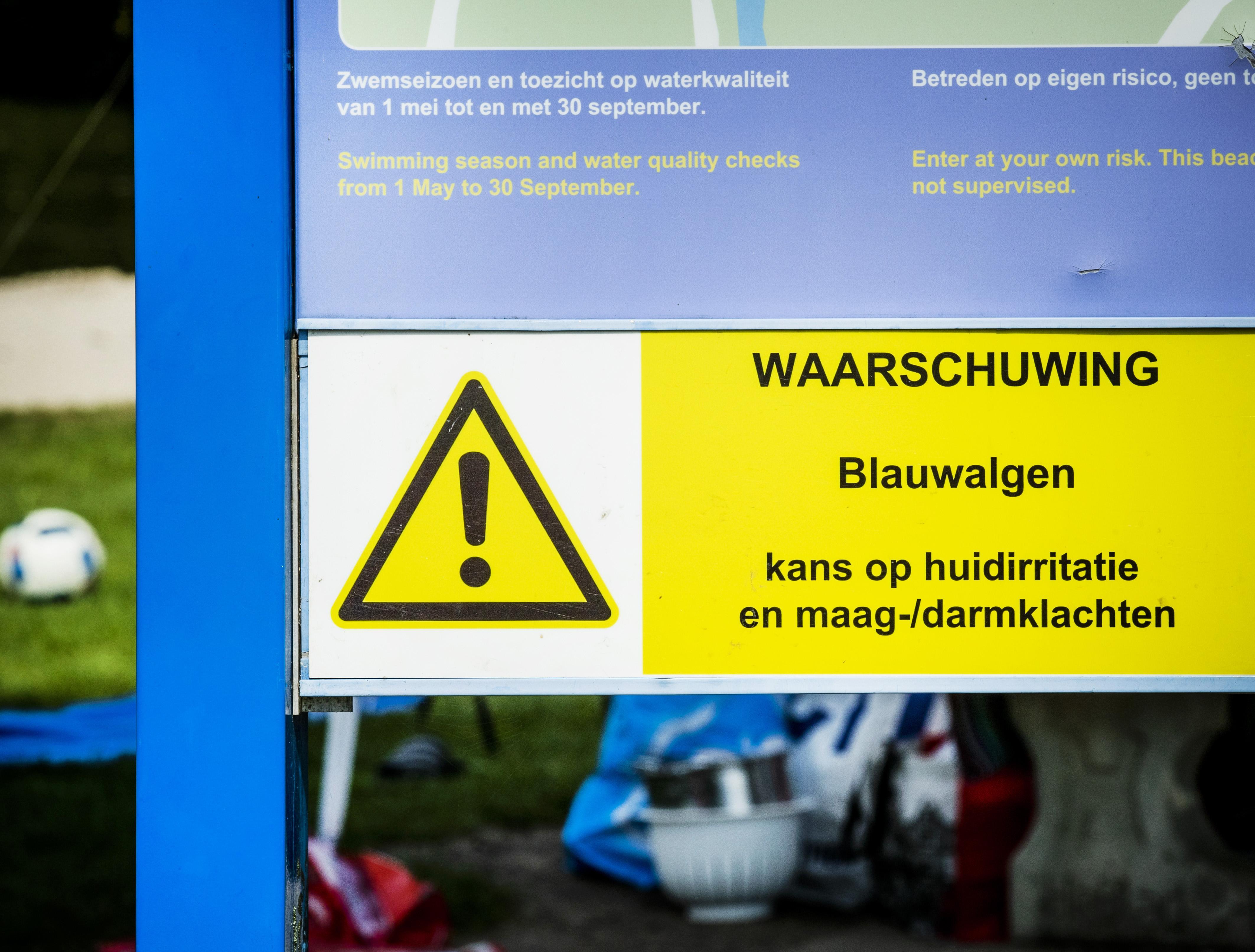 Blauwalg rukt op in de regio: nu ook in de Alphense Zegerplas