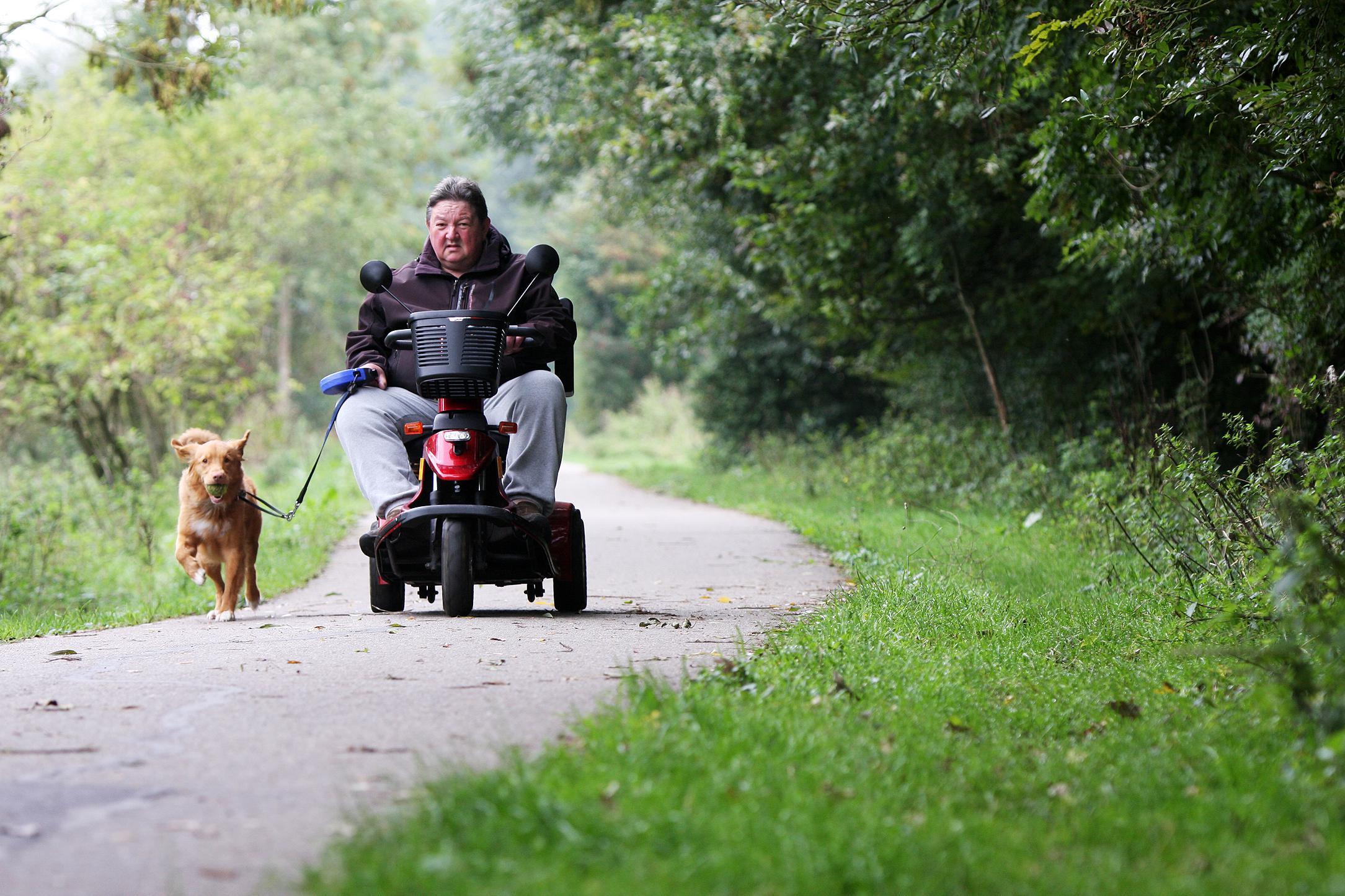 Bezwaar IVN tegen 'niet openbaar' landgoed langs Westkanaalweg in Alphen