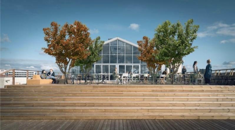 Restaurant De Dakkas in Haarlem krijgt volgende week vier nieuwe bomen. Ze zijn zes meter hoog en hebben geen wortels