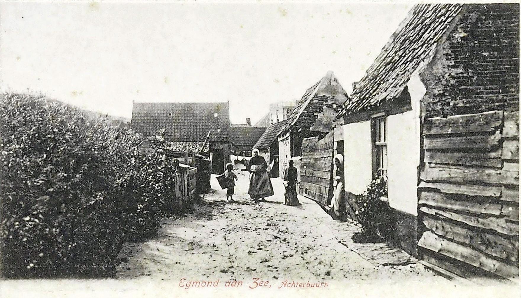 Tyfus slaat toe in Egmond aan Zee. Dagelijks luiden de klokken en gaan de lijkdragers voorbij. Het 'coronavirus van toen', 150 jaar geleden. De mond, de tong, alles werd zwart...