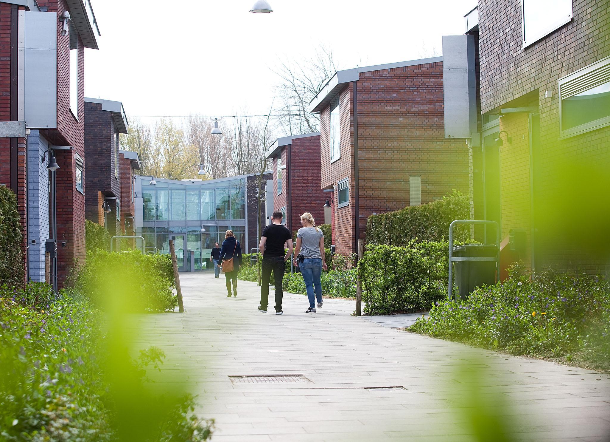 Zon schijnt na crisis weer bij Transferium in Heerhugowaard: behandelgroepen druppelen vol, jeugdinstelling heeft 30 vacatures