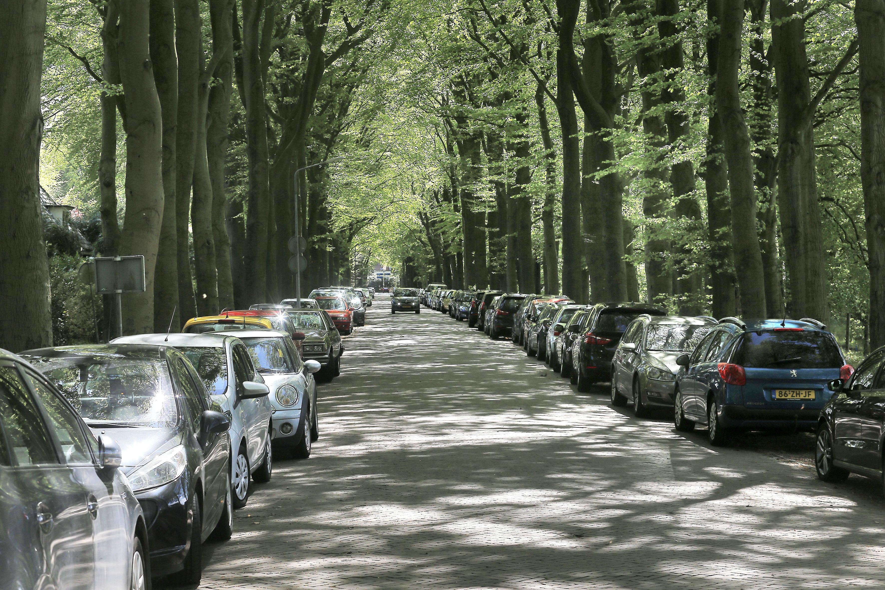 Massaal protest tegen parkeren in bos Speelpark Oud Valkeveen: 'Ze groeien uit hun jas'
