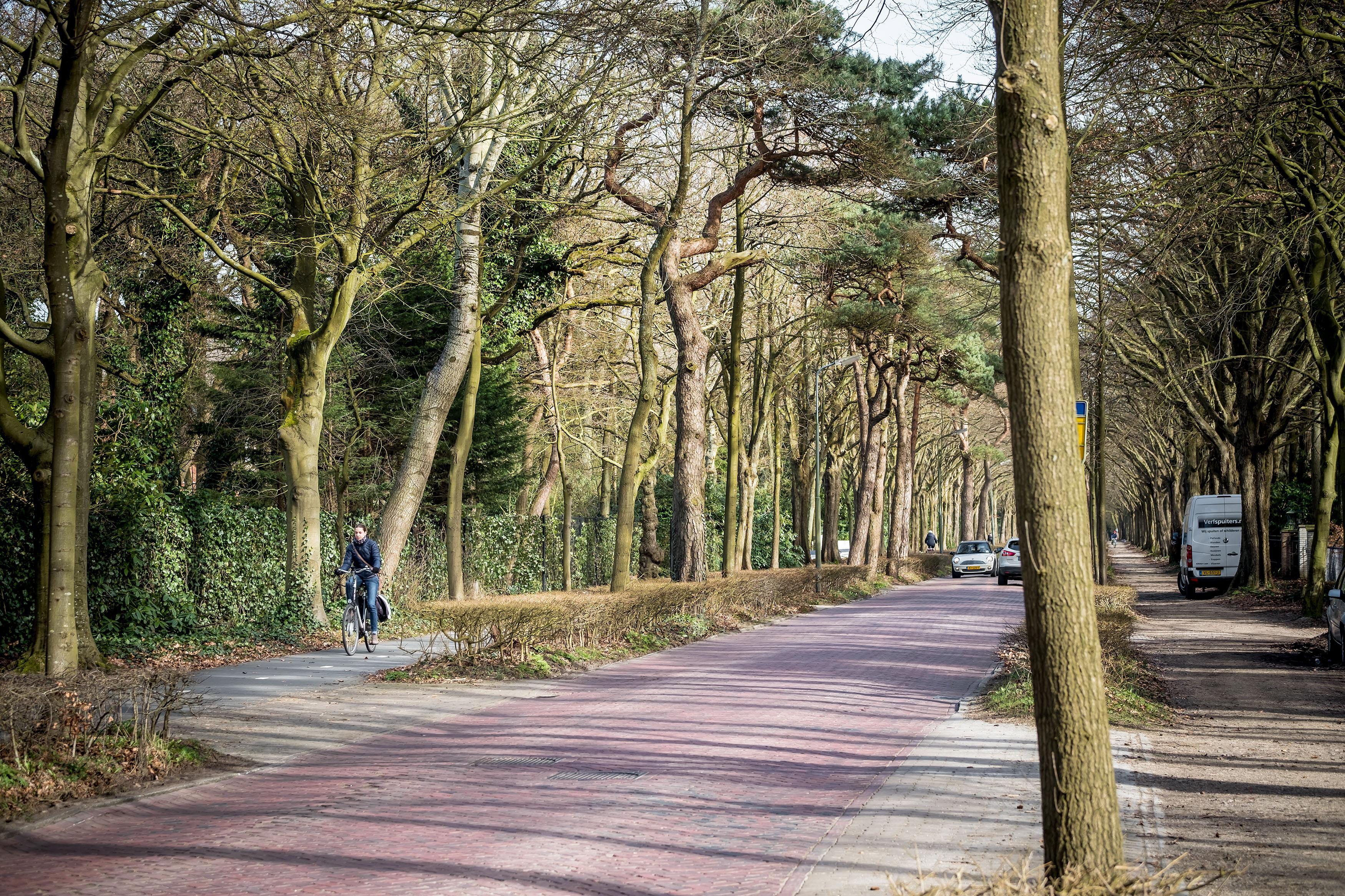 Bewoners Eeuwigelaan Bergen dienen bezwaarschrift in tegen tweede fietspad: 'Kwaliteit van wonen wordt ernstig aangetast'