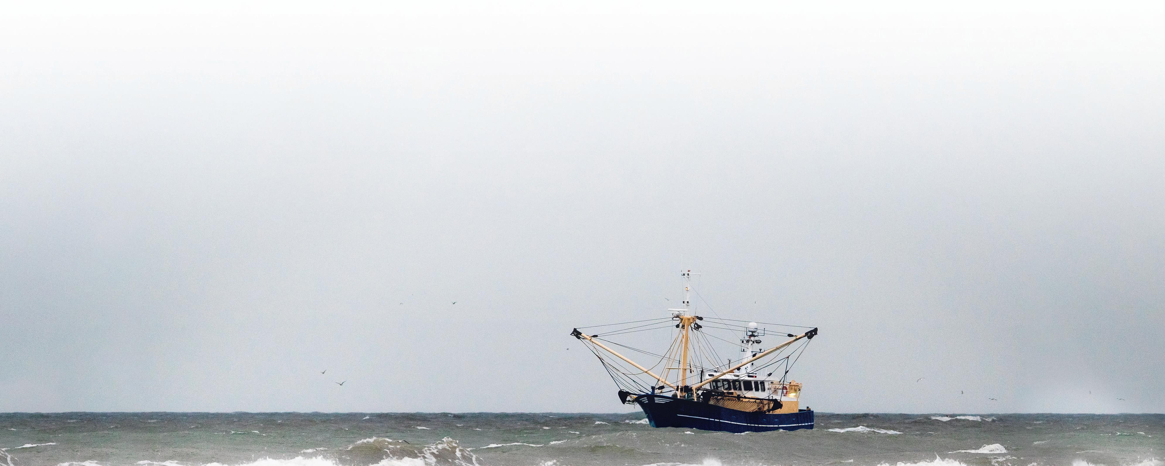 'Bezorgd om de zee, dat zijn vissers ook' | opinie