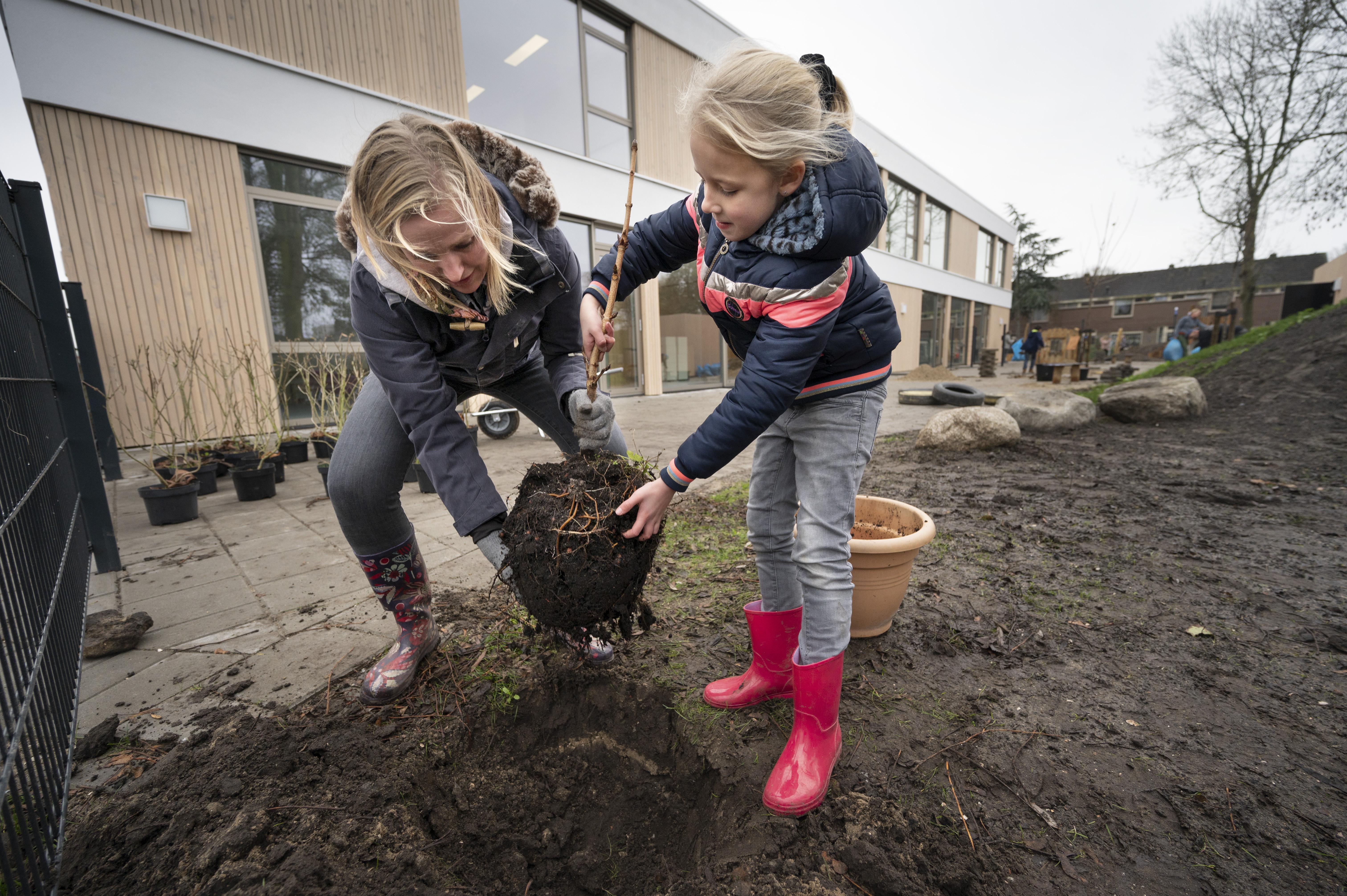 Leerlingen De Lei in Leimuiden maken schoolplein niet alleen spannend, maar ook groen